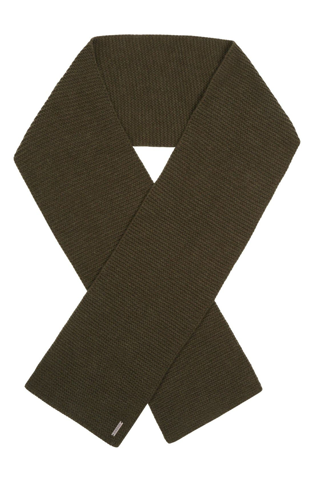 Extra Long Knit Scarf,                             Alternate thumbnail 9, color,