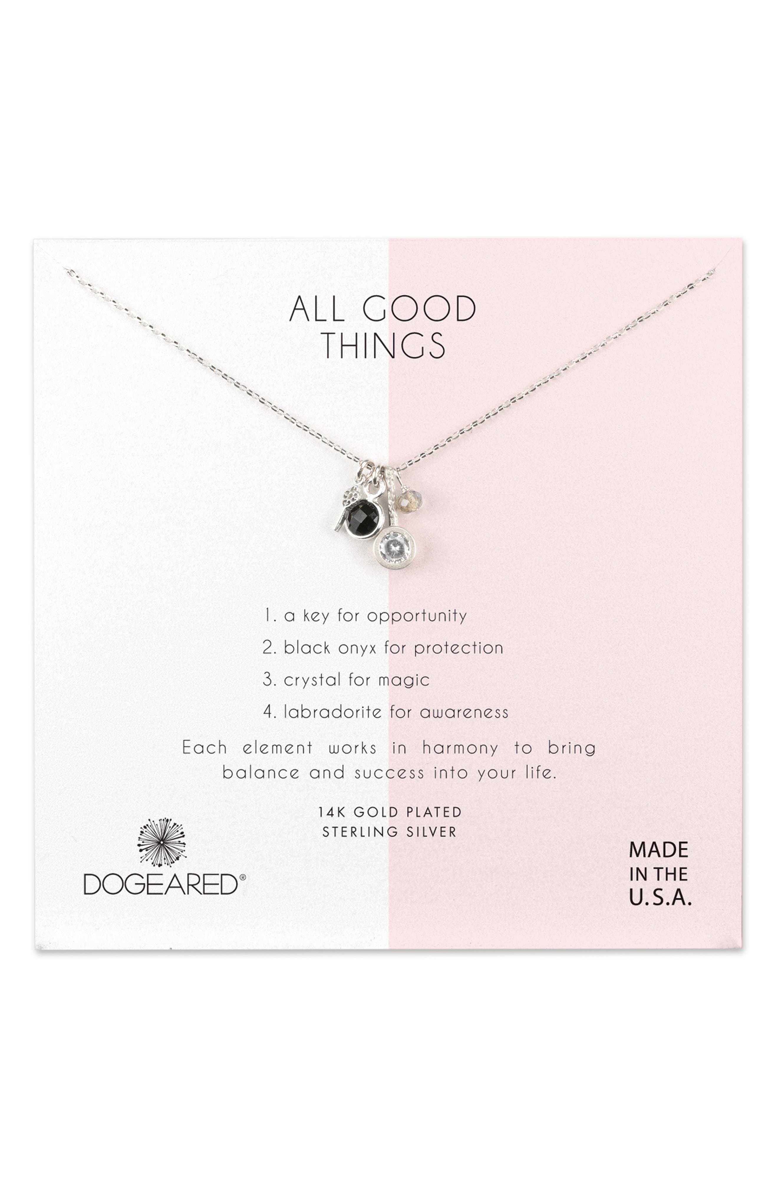 All Good Things Onyx Necklace,                             Main thumbnail 1, color,                             SILVER