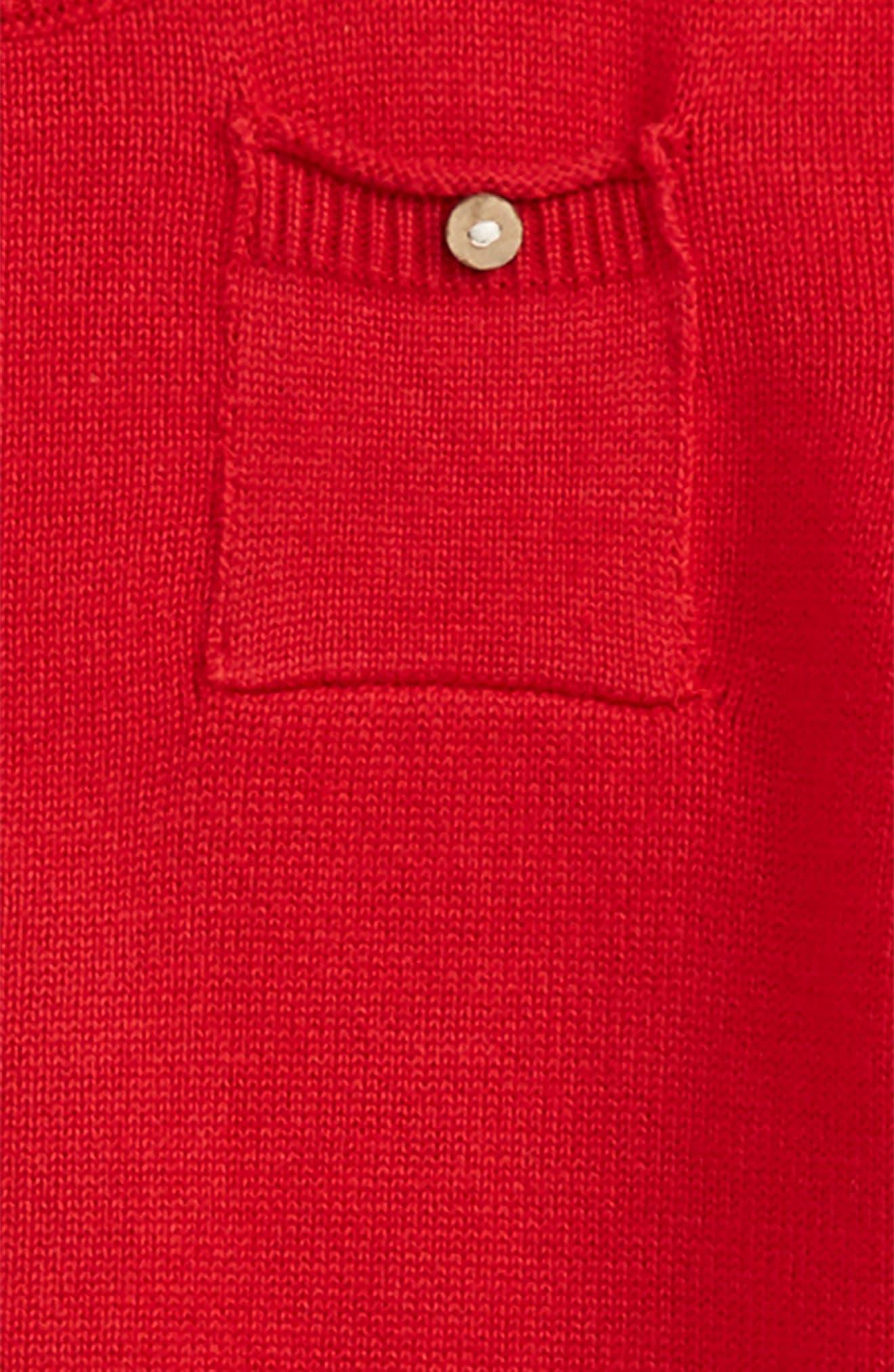 Pocket Organic Cotton Sweater,                             Alternate thumbnail 2, color,                             620