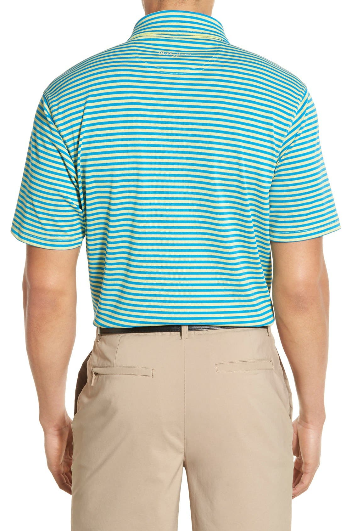 XH2O Feed Stripe Stretch Golf Polo,                             Alternate thumbnail 31, color,