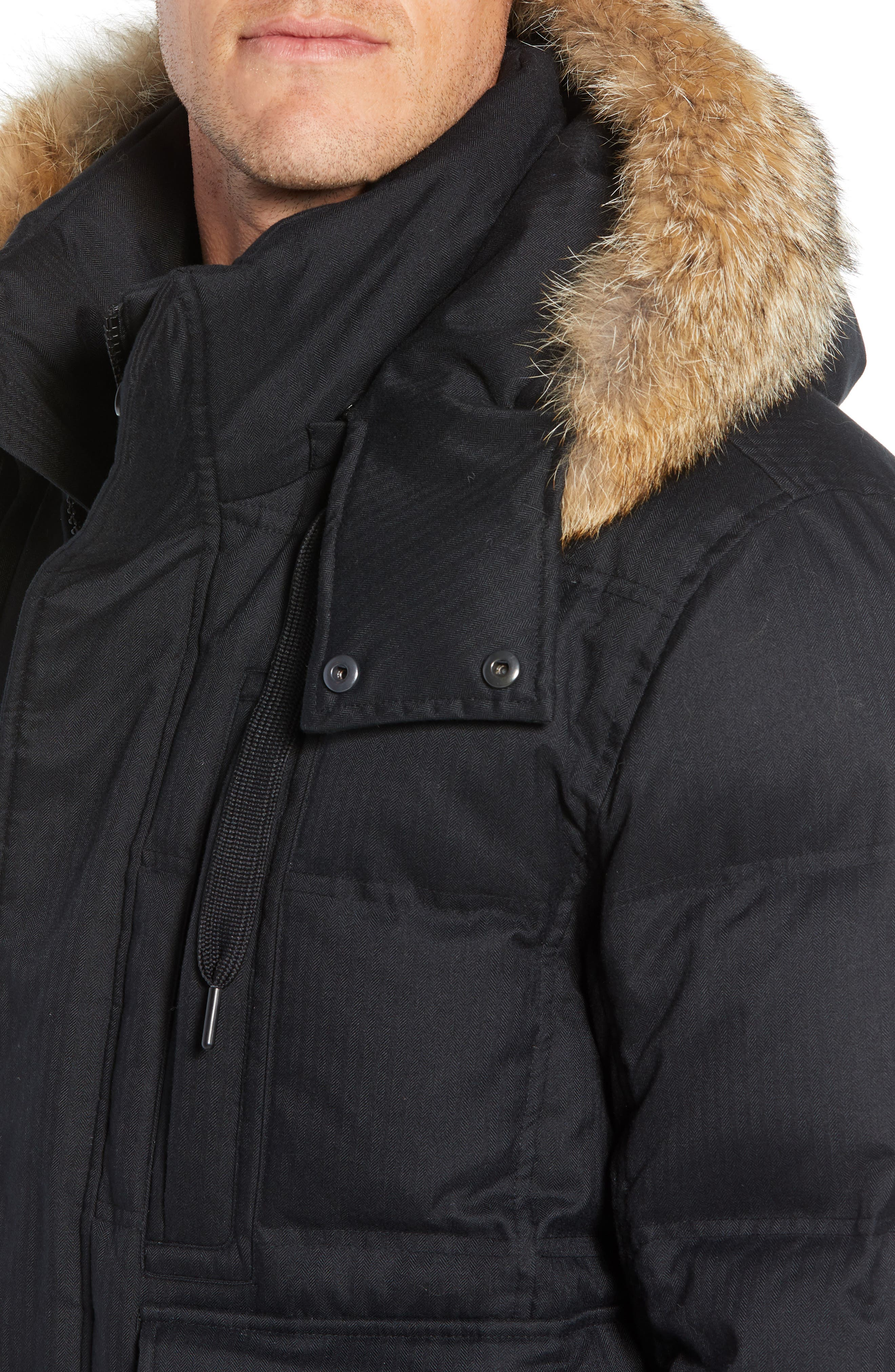 Bohlen Down & Feather Bomber Jacket with Removable Genuine Coyote Fur Trim Hood,                             Alternate thumbnail 5, color,                             BLACK