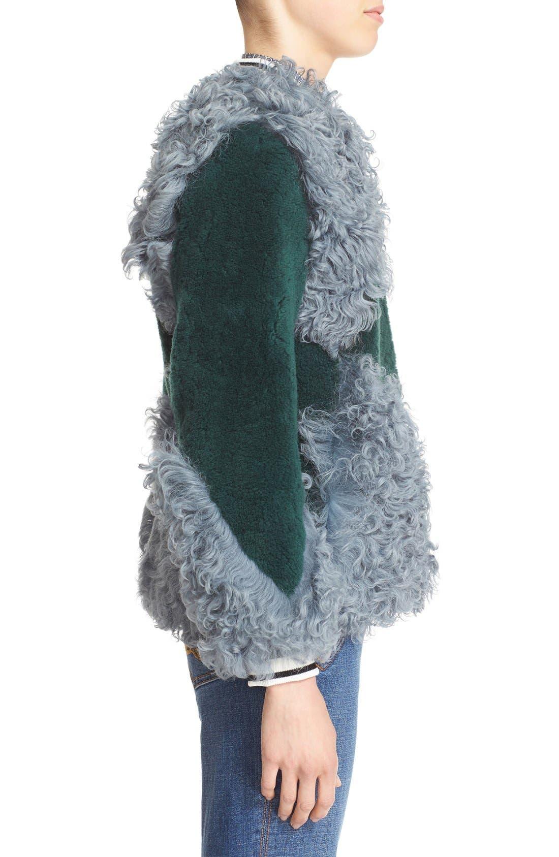 'Bristol' Colorblock Genuine Shearling Jacket,                             Alternate thumbnail 5, color,                             318