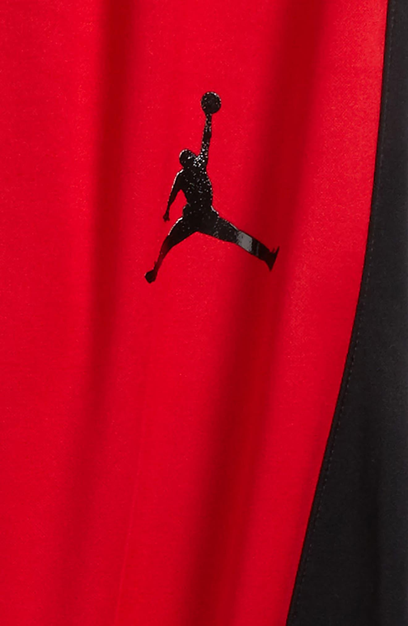 Jordan Flight Air Therma-FIT Reversible Fleece Pants,                             Alternate thumbnail 6, color,