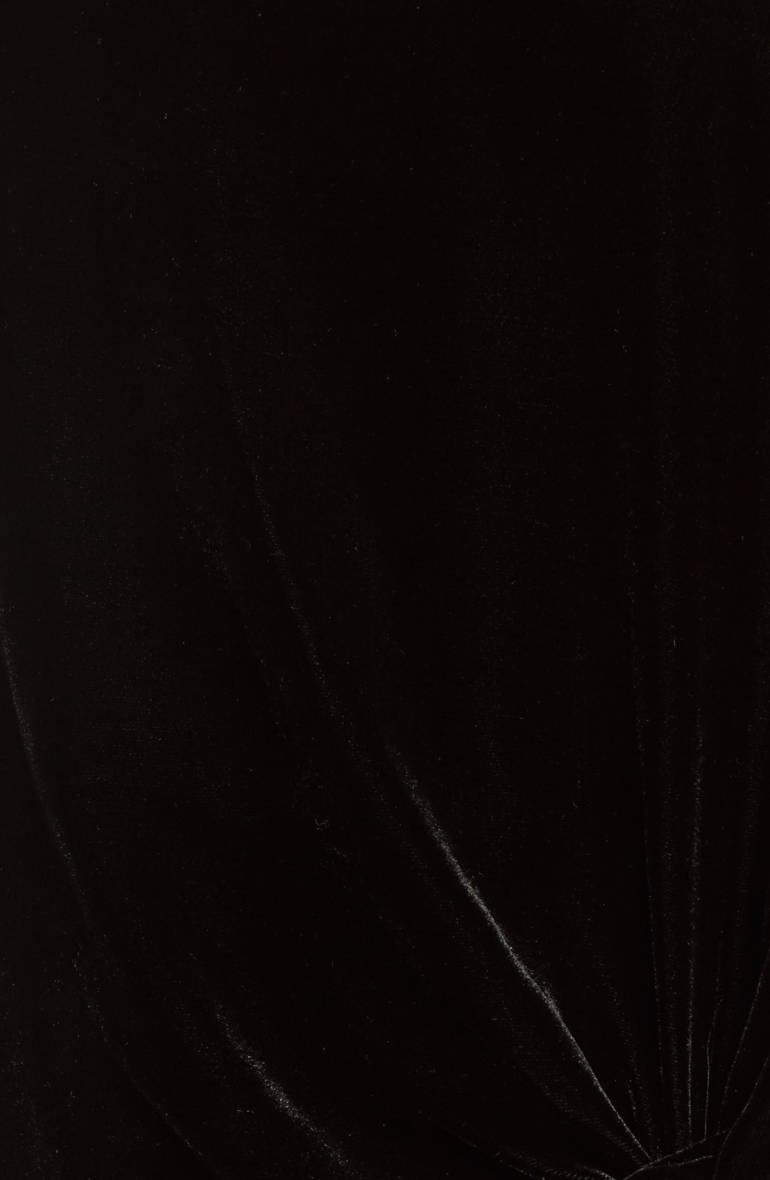 Ikaria Velvet Top,                             Alternate thumbnail 5, color,                             001