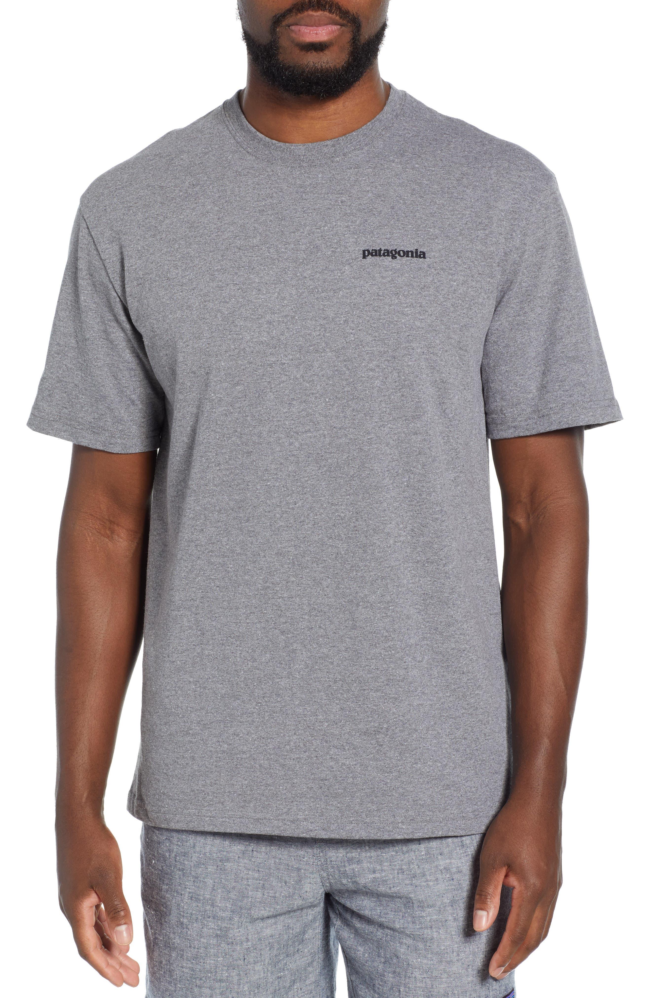 Patagonia Fitz Roy Bison Responsibili-Tee T-Shirt, Grey