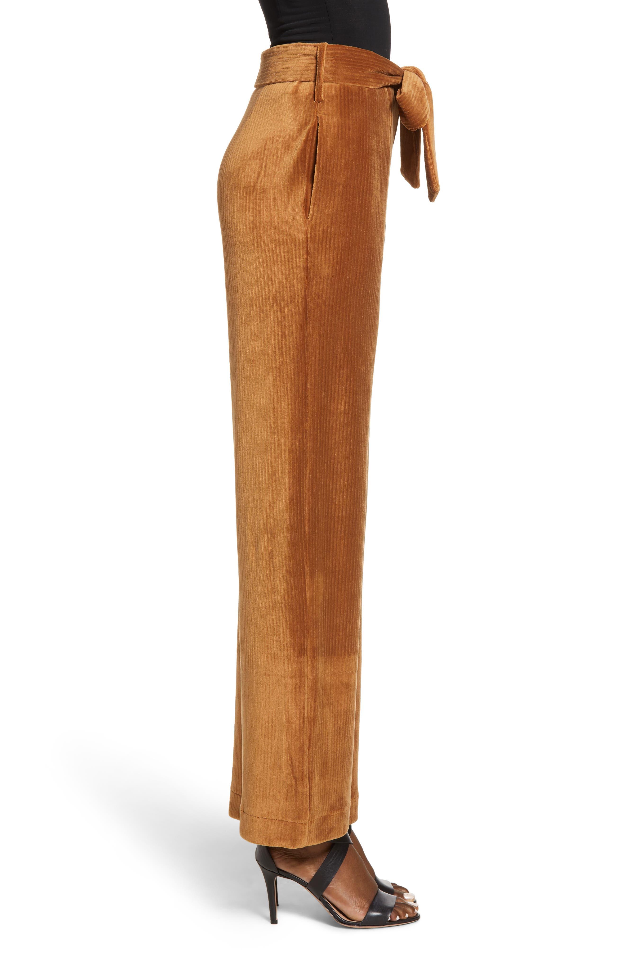Velour Tie Waist Pants,                             Alternate thumbnail 3, color,                             CARAMEL