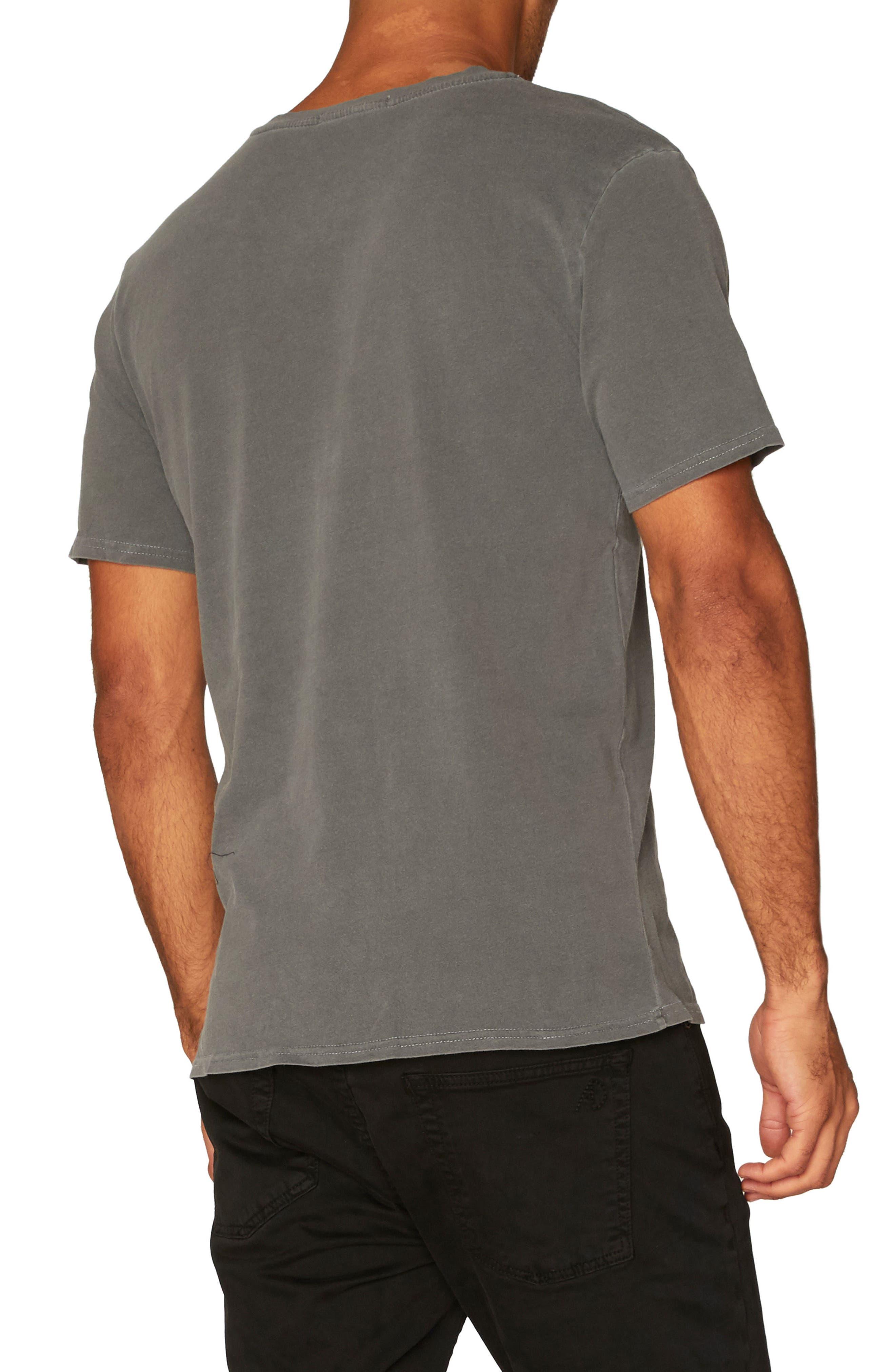 Standard V-Neck T-Shirt,                             Alternate thumbnail 2, color,                             020