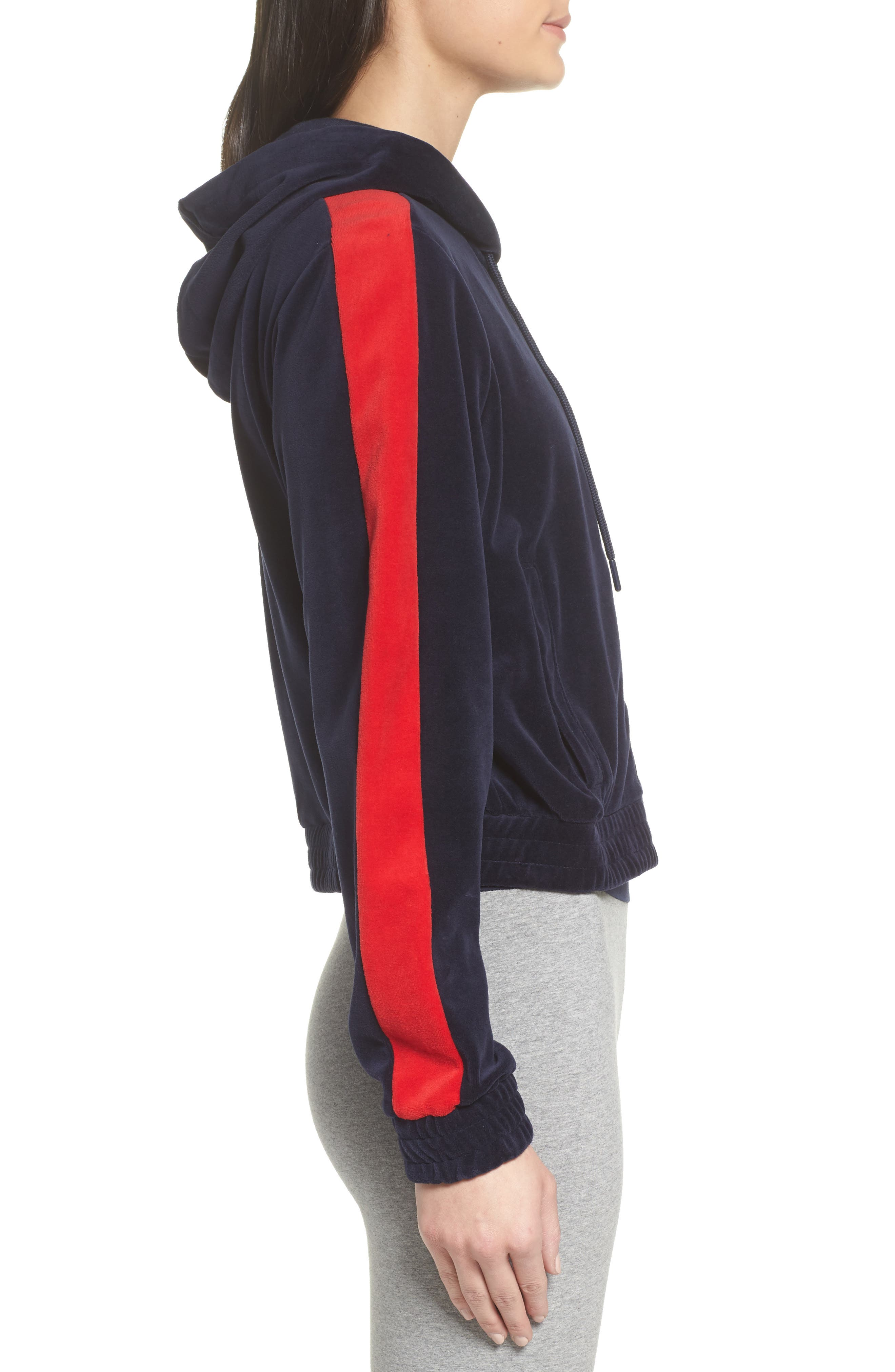 Carly Velour Hoodie,                             Alternate thumbnail 7, color,