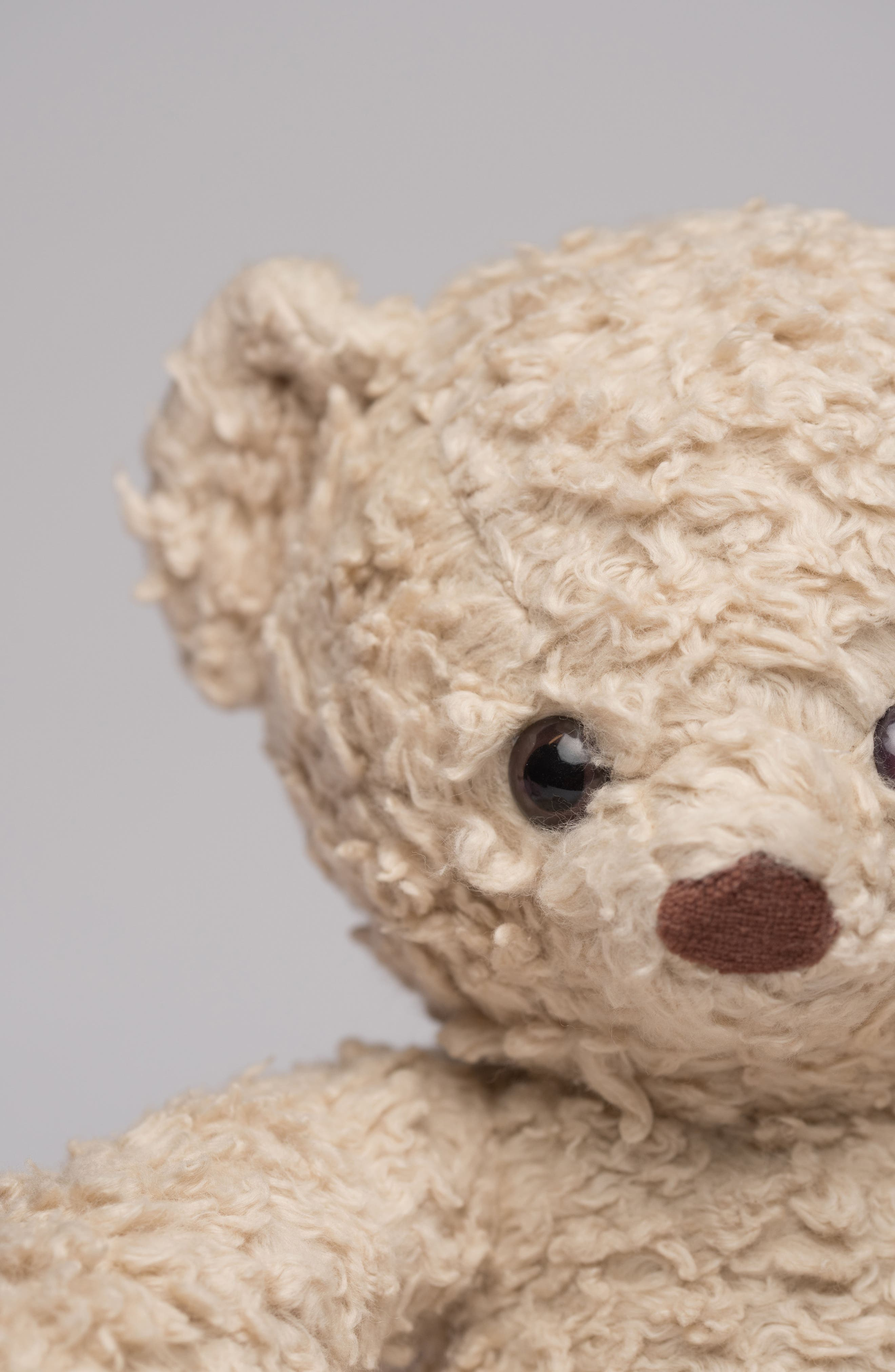 Medium Stuffed Bear,                             Alternate thumbnail 27, color,