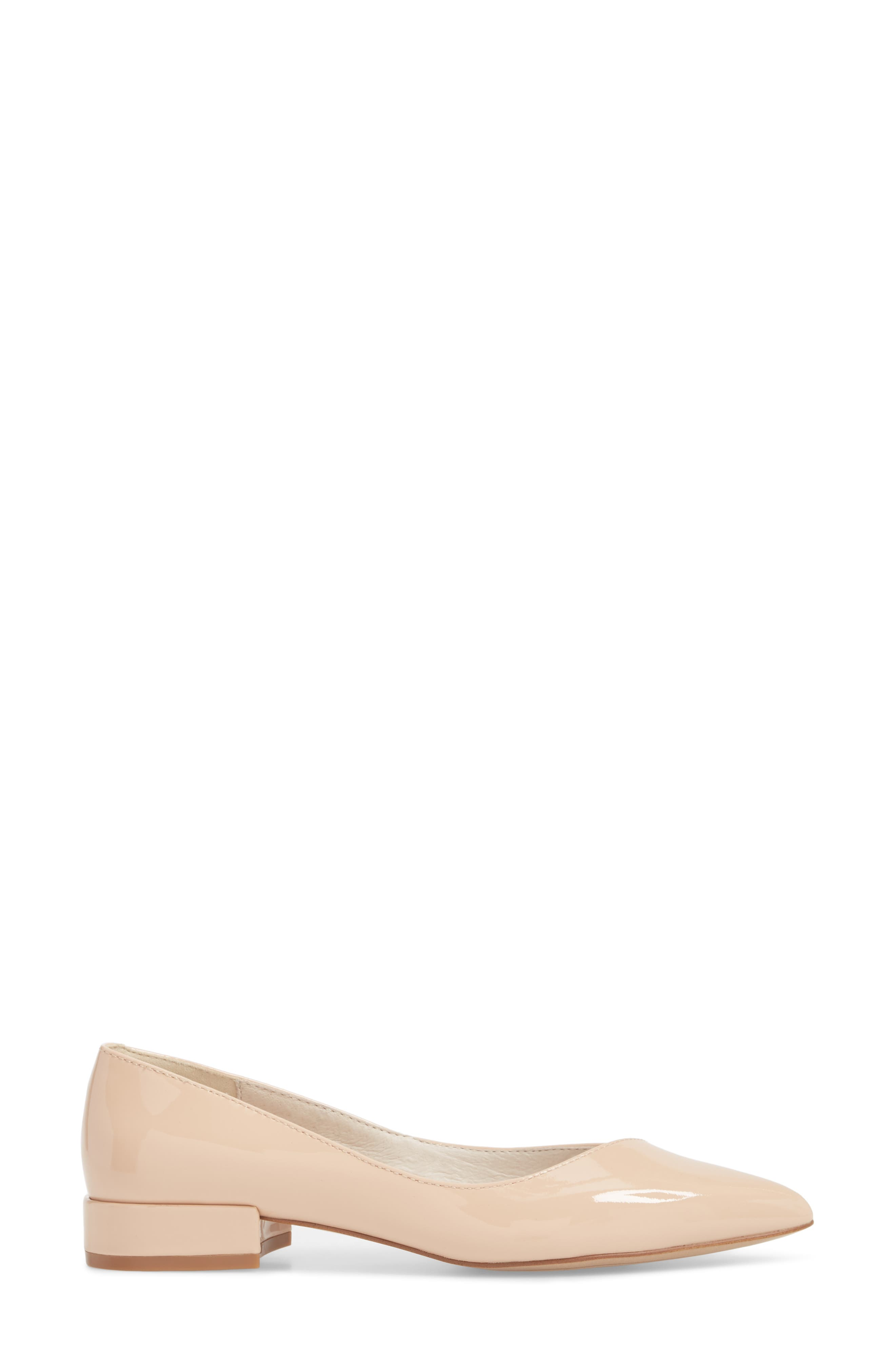 Ames Pointy Toe Flat,                             Alternate thumbnail 3, color,                             294