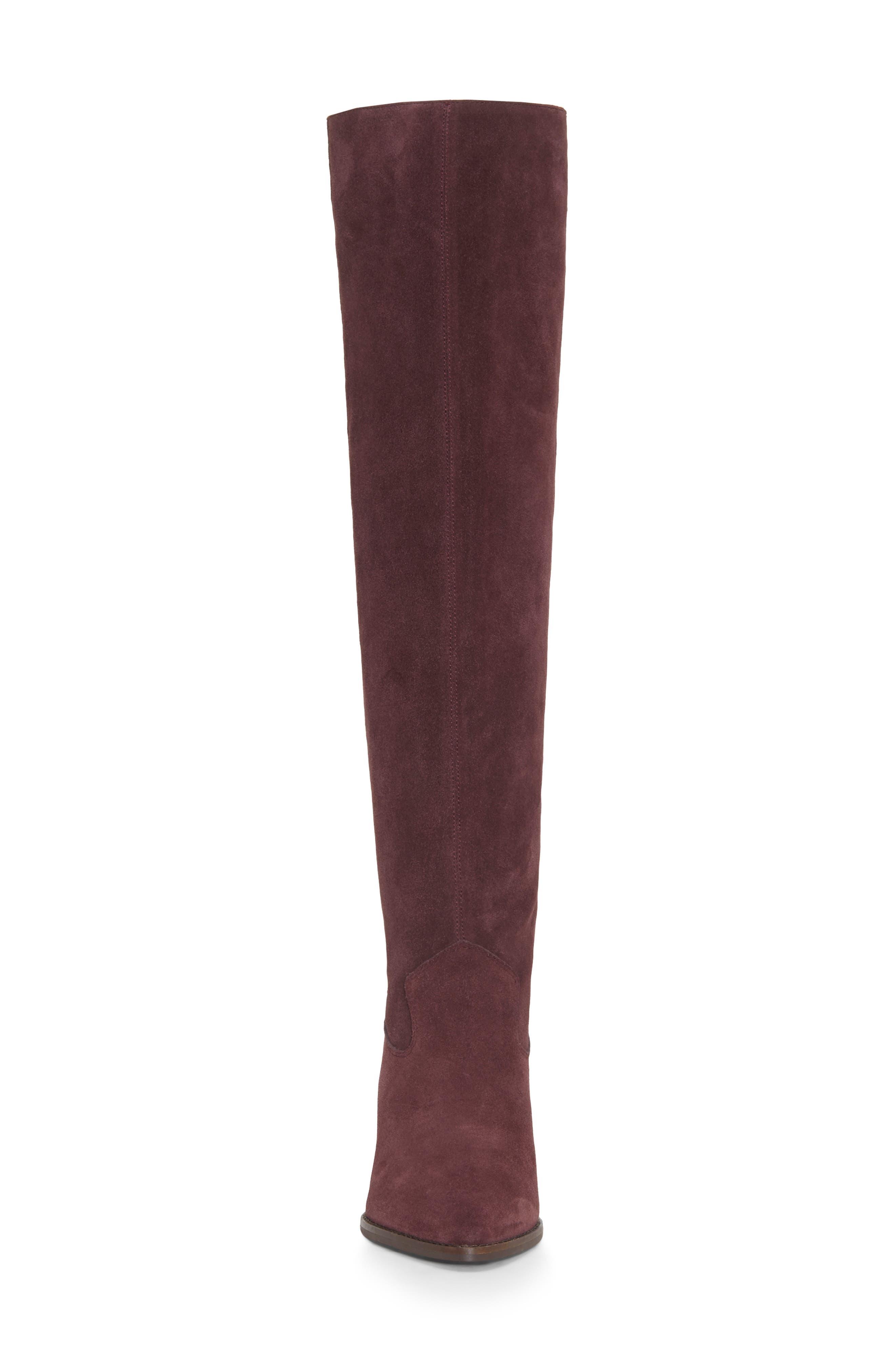 LUCKY BRAND,                             Azoola Knee High Boot,                             Alternate thumbnail 4, color,                             RAISIN SUEDE