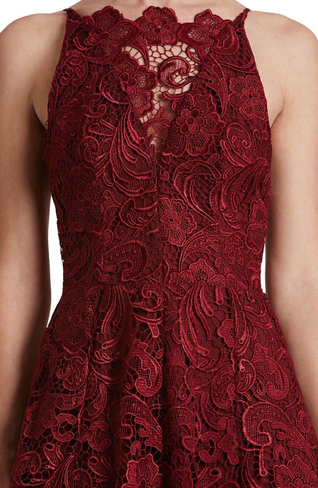 'Hayden' Lace Fit & Flare Dress,                             Alternate thumbnail 10, color,