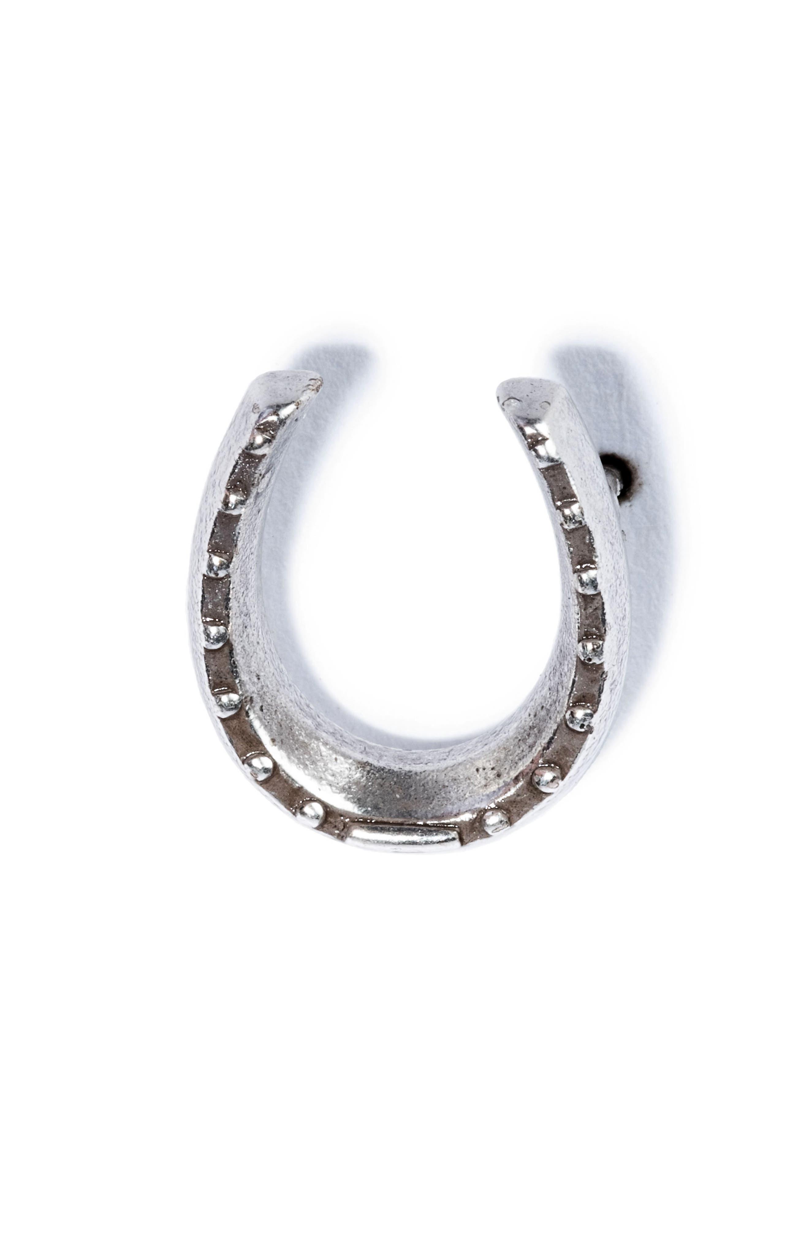 Horseshoe Pin,                             Main thumbnail 1, color,                             SILVER