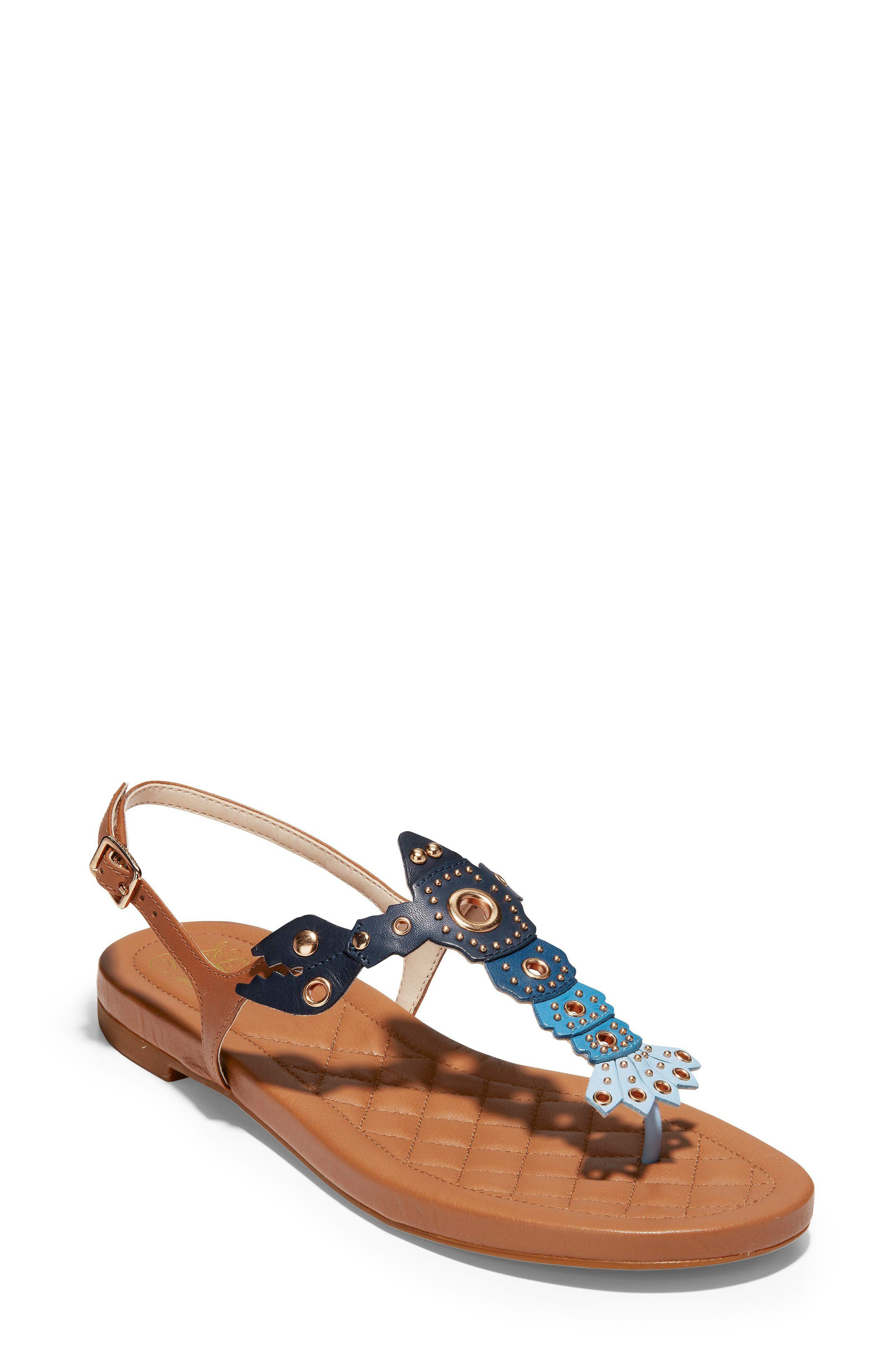 Pinch Lobster Sandal,                             Main thumbnail 1, color,                             NAVY MULTI LEATHER