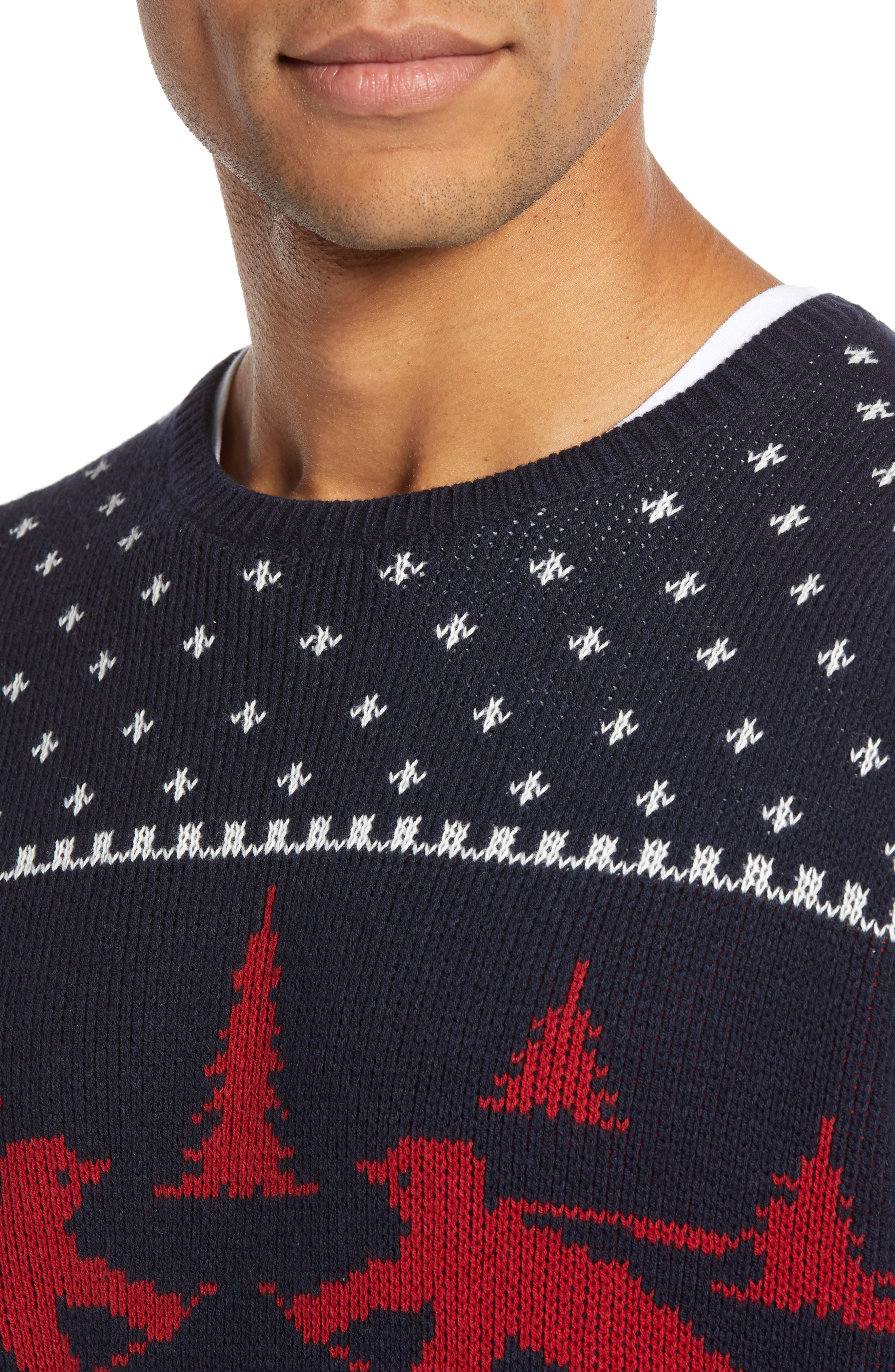 Fair Isle Ski Sweater,                             Alternate thumbnail 4, color,                             410
