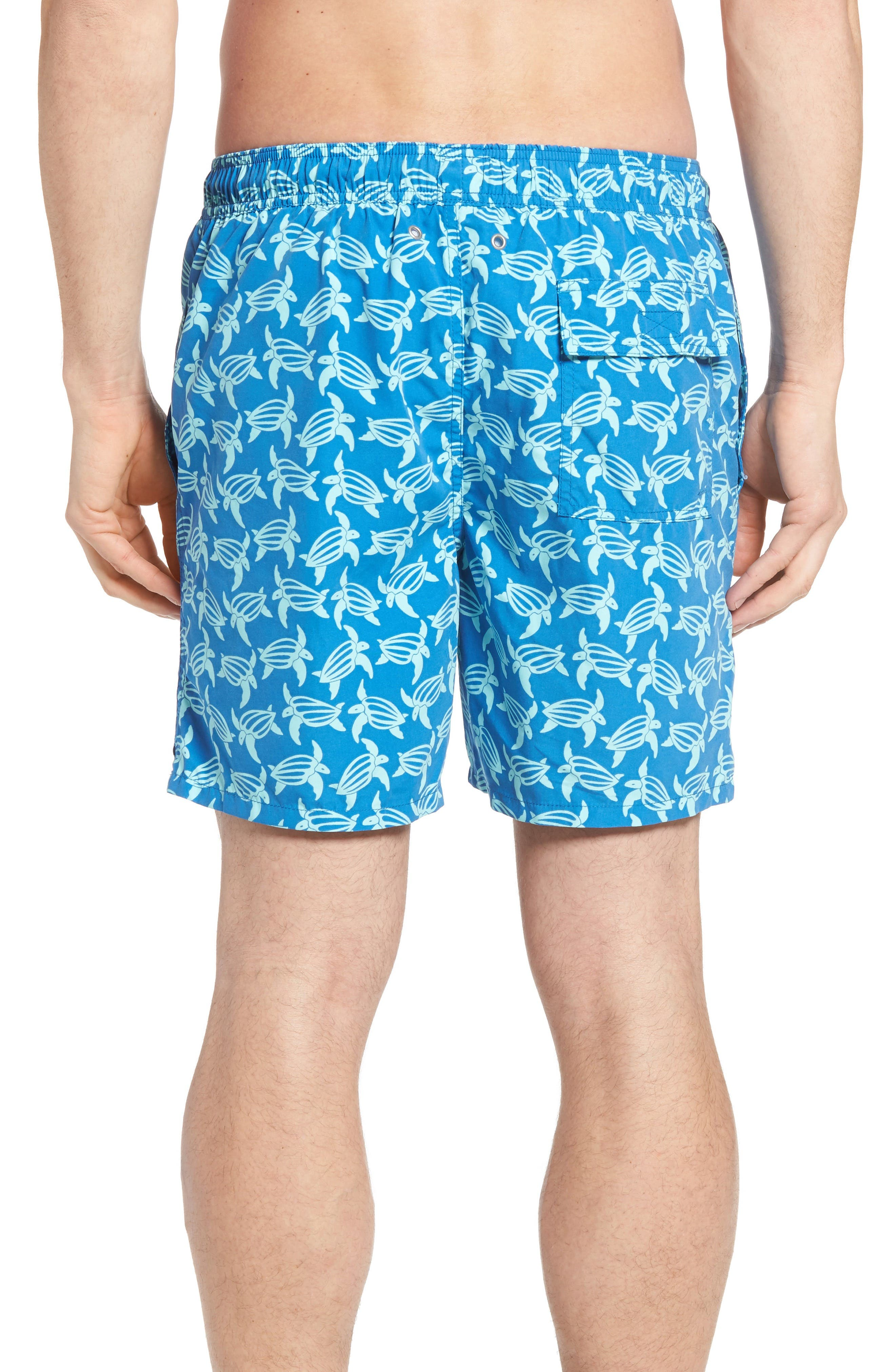 Turtle Print Swim Trunks,                             Alternate thumbnail 2, color,                             MID BLUE AND SKY