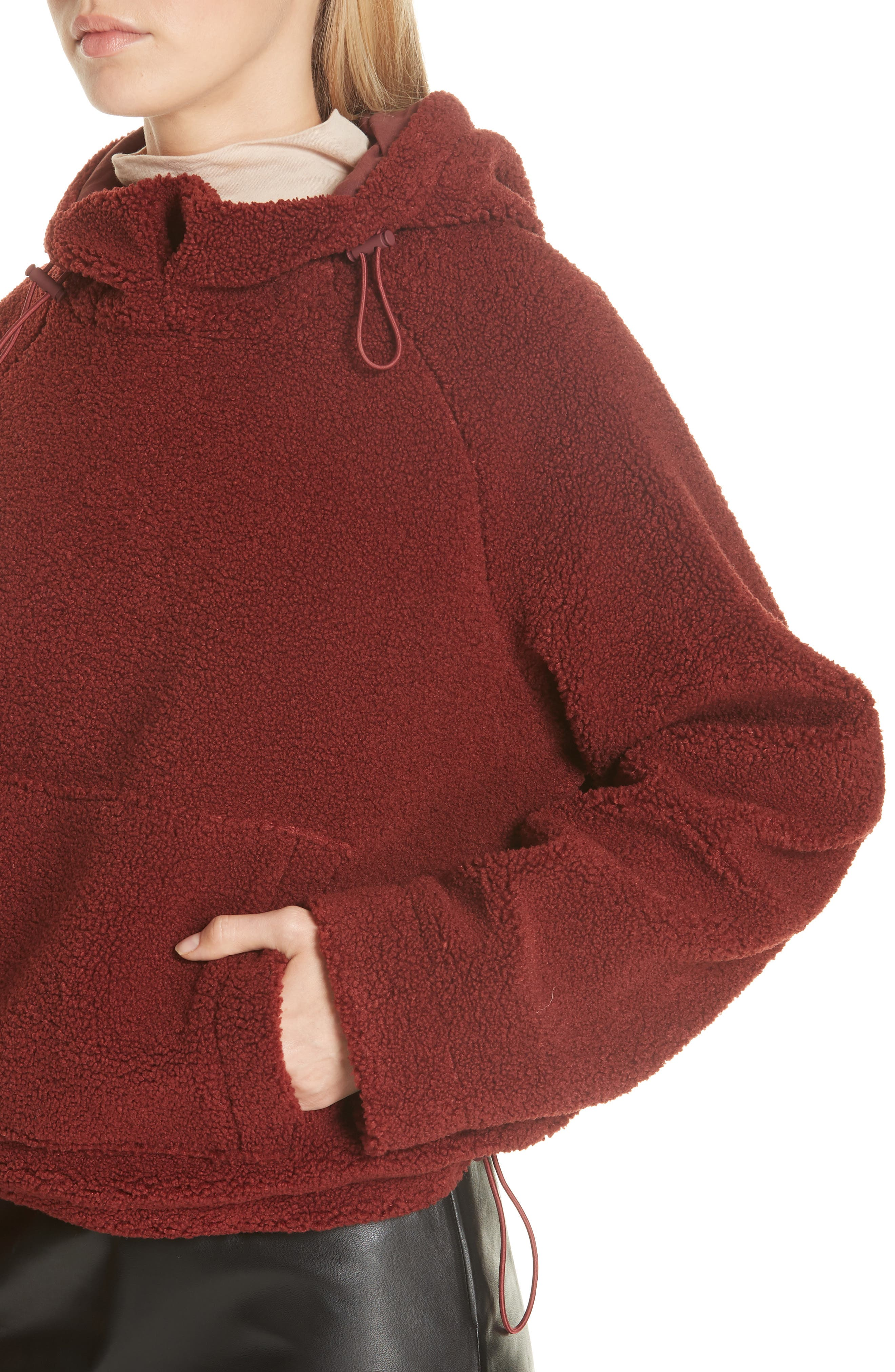 Cozy Hoodie,                             Alternate thumbnail 4, color,                             ANISE