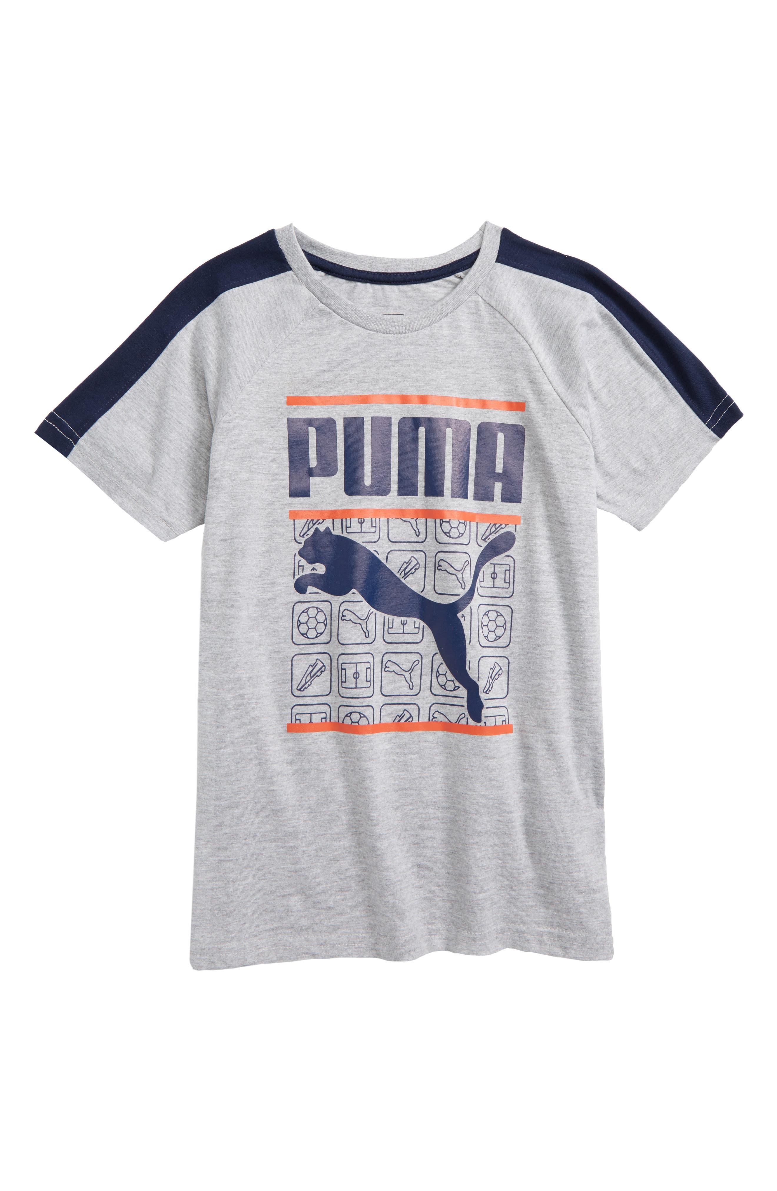 Graphic Raglan T-Shirt,                         Main,                         color, 078