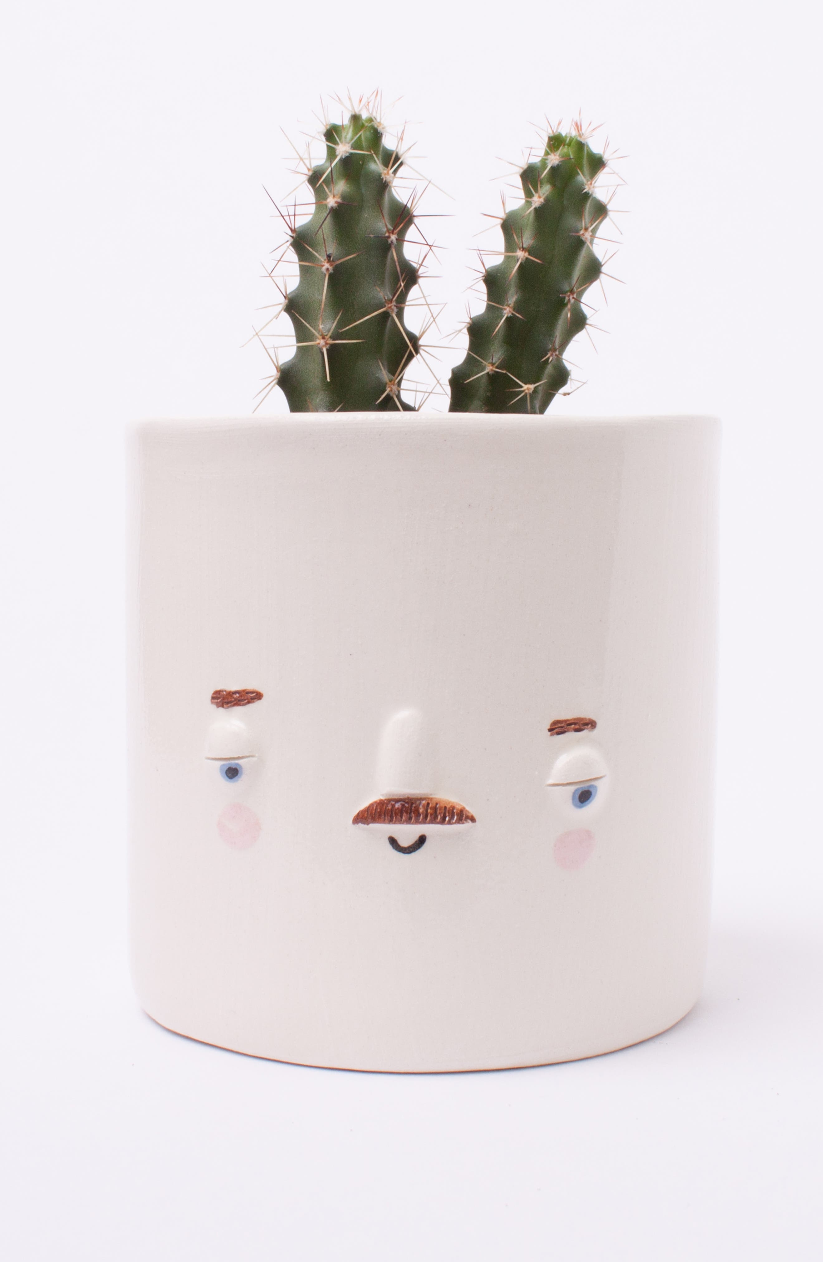 Medium Keith Face Planter,                             Alternate thumbnail 2, color,                             100