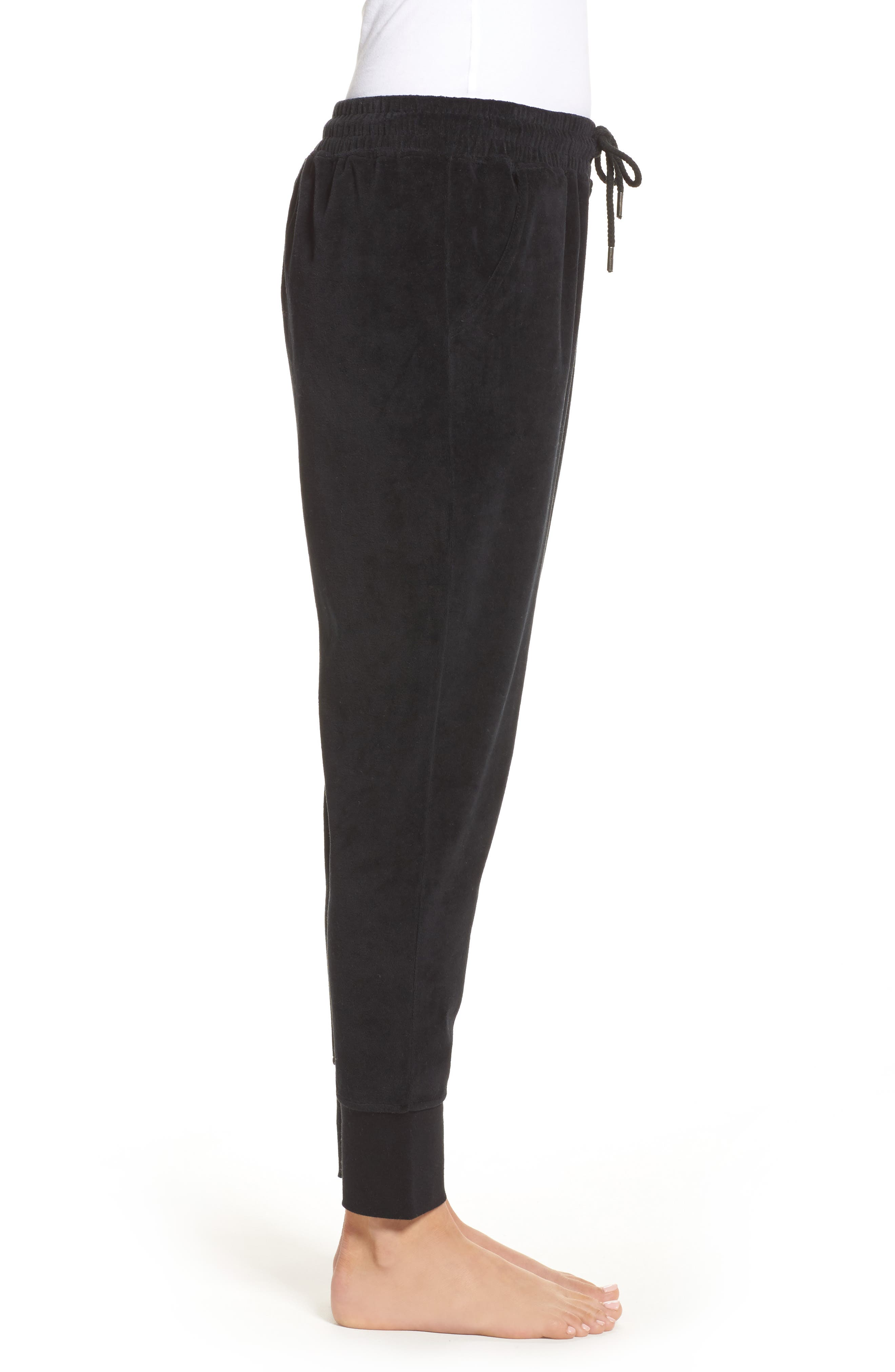 Brunette Embroidered Velour Jogger Pants,                             Alternate thumbnail 3, color,                             001