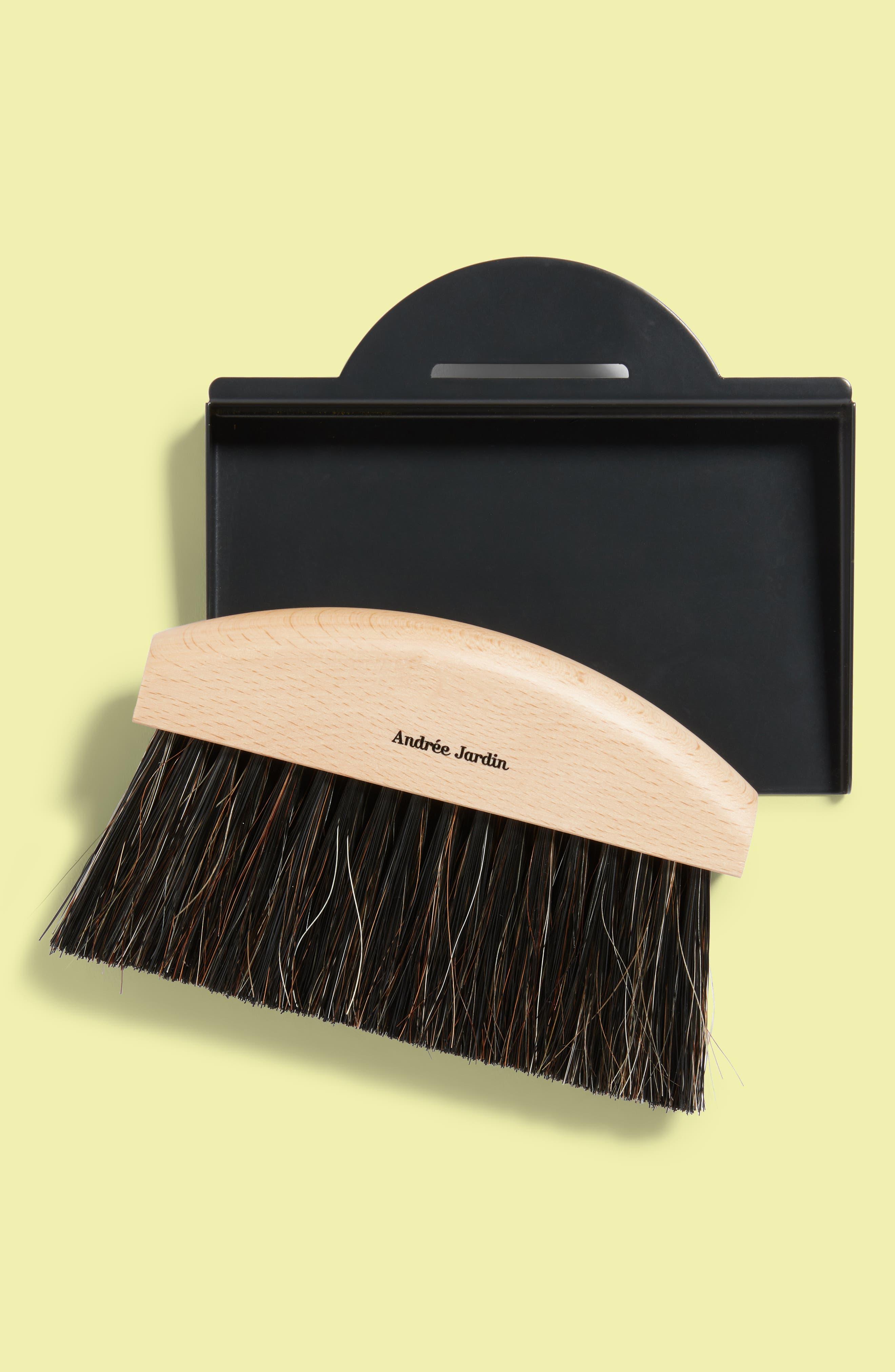 Andrée Jardin Mini Brush & Dustpan Set,                             Main thumbnail 1, color,                             001