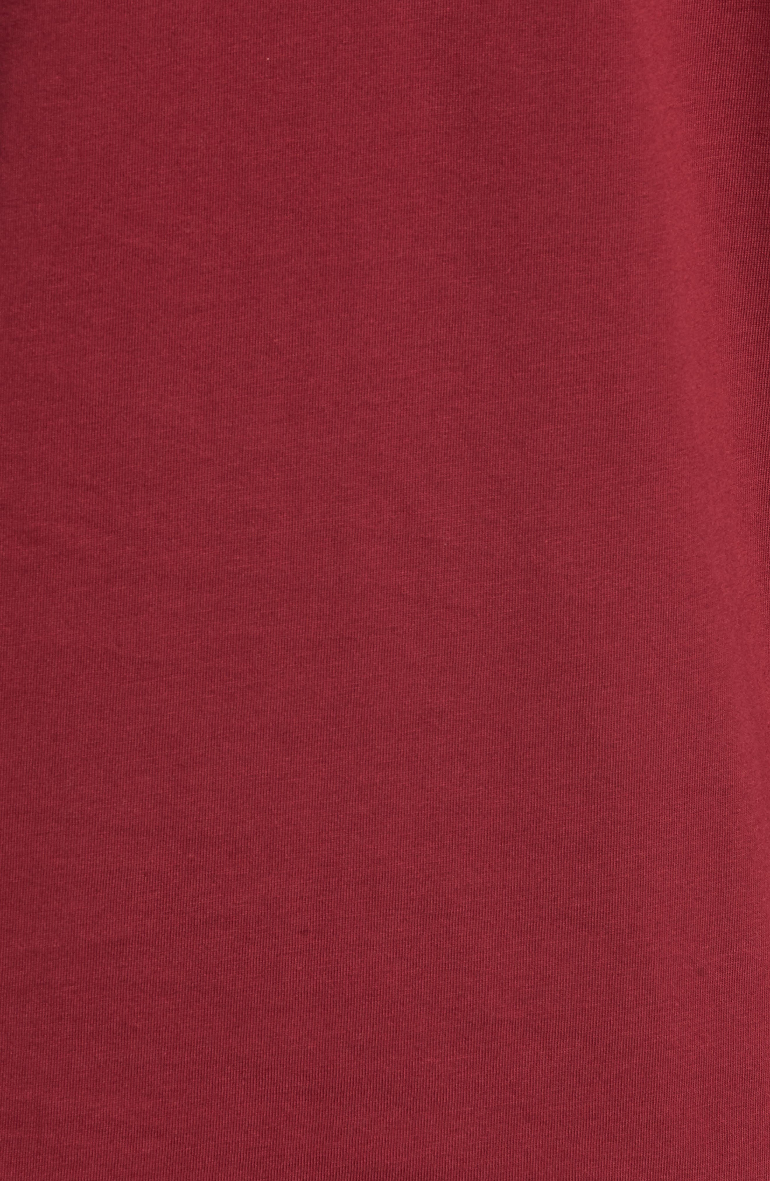 Embroidered Colorblock T-Shirt,                             Alternate thumbnail 5, color,                             TAWNY PORT