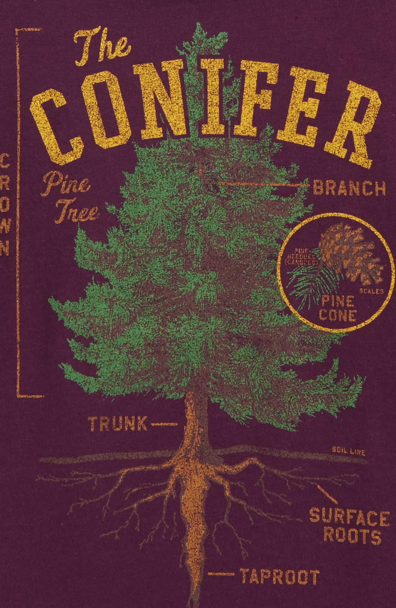 The Conifer Graphic T-Shirt,                             Alternate thumbnail 3, color,                             517