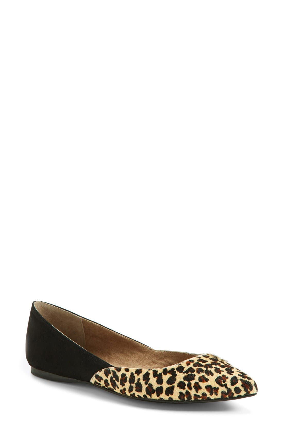 'Doubletime' Pointy Toe Flat,                         Main,                         color, 006