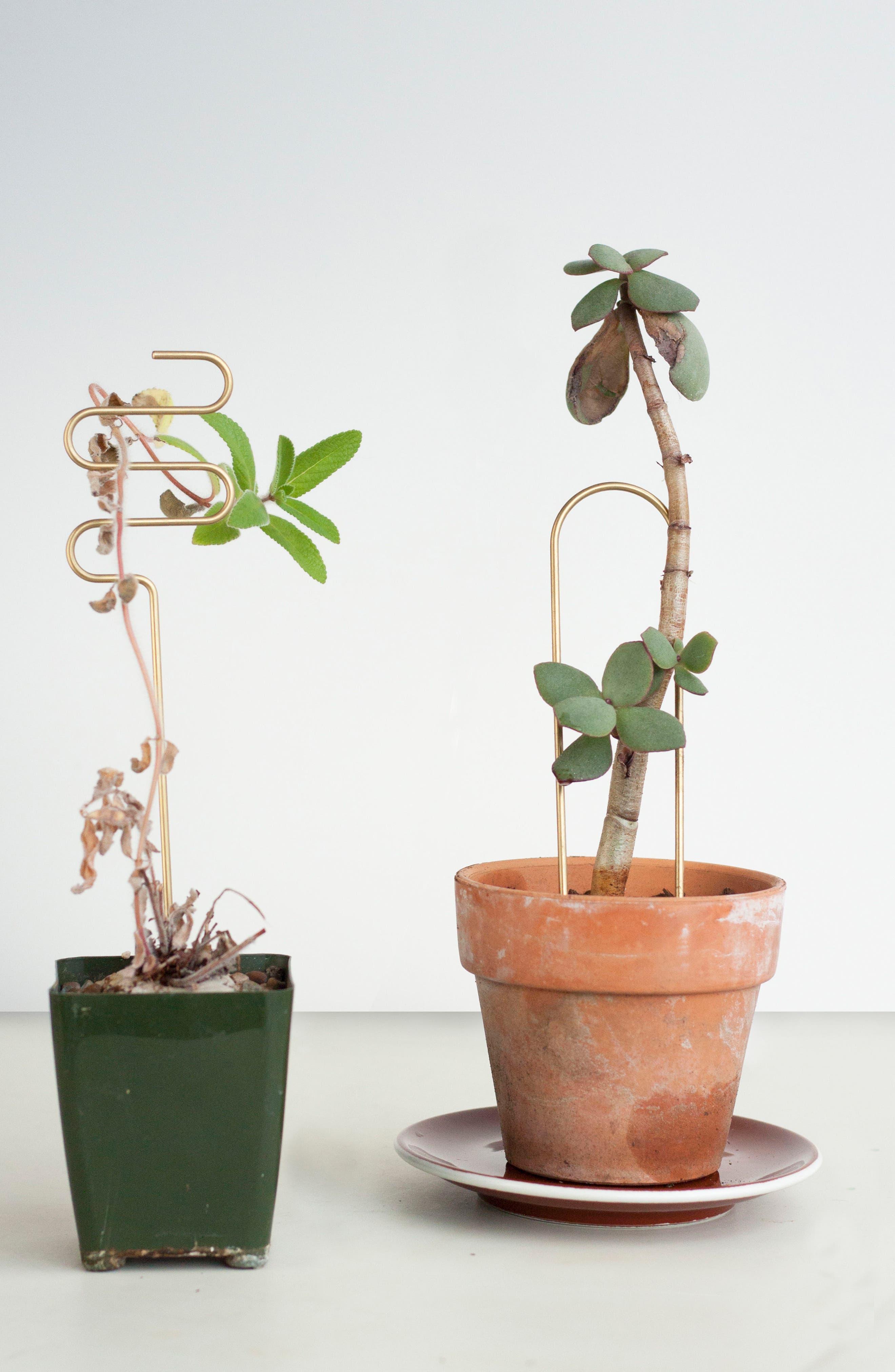 Set of 3 Plant Sticks,                             Alternate thumbnail 11, color,                             BRASS