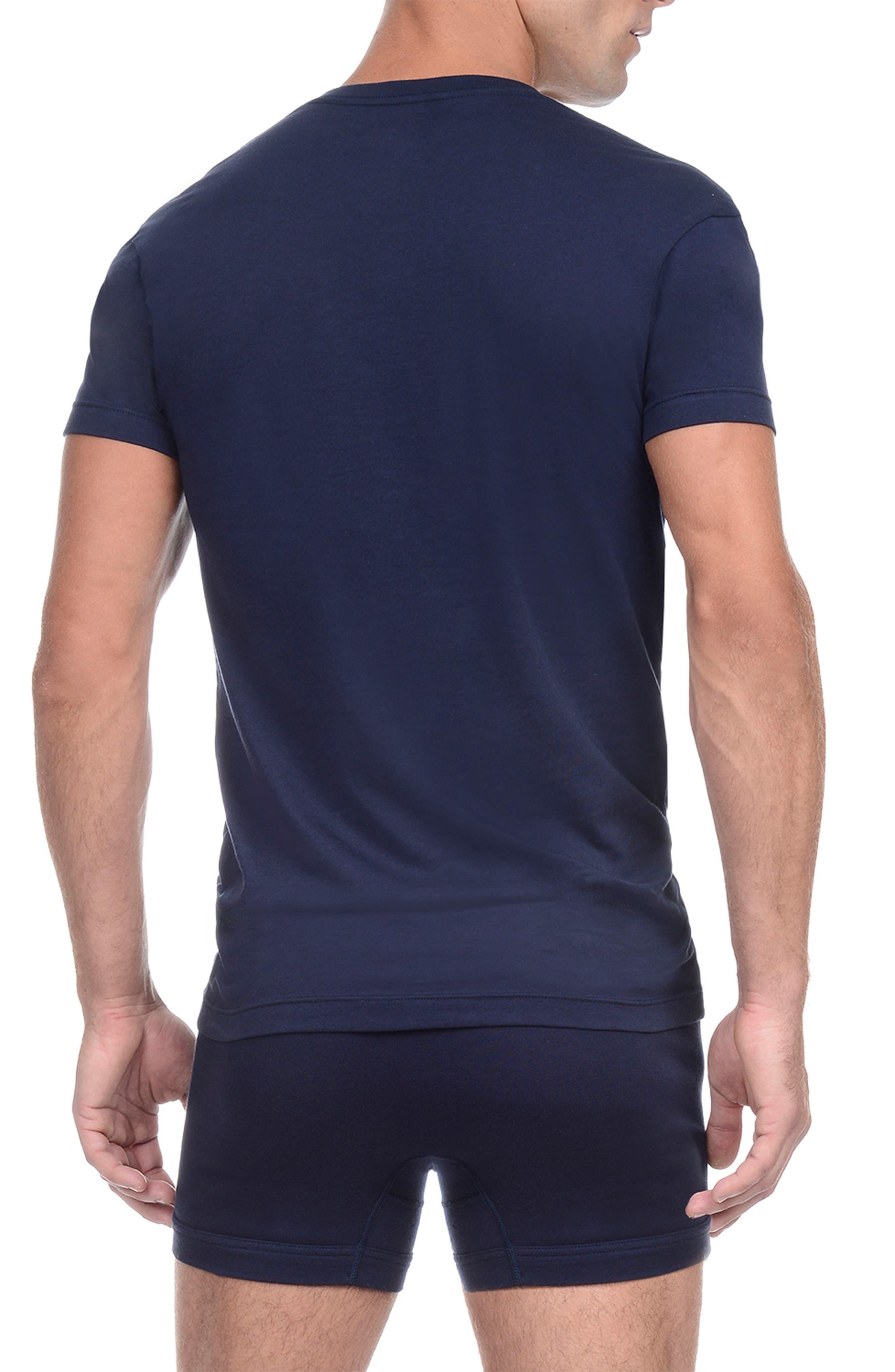 Slim Fit Pima Cotton Deep V-Neck T-Shirt,                             Alternate thumbnail 2, color,                             480