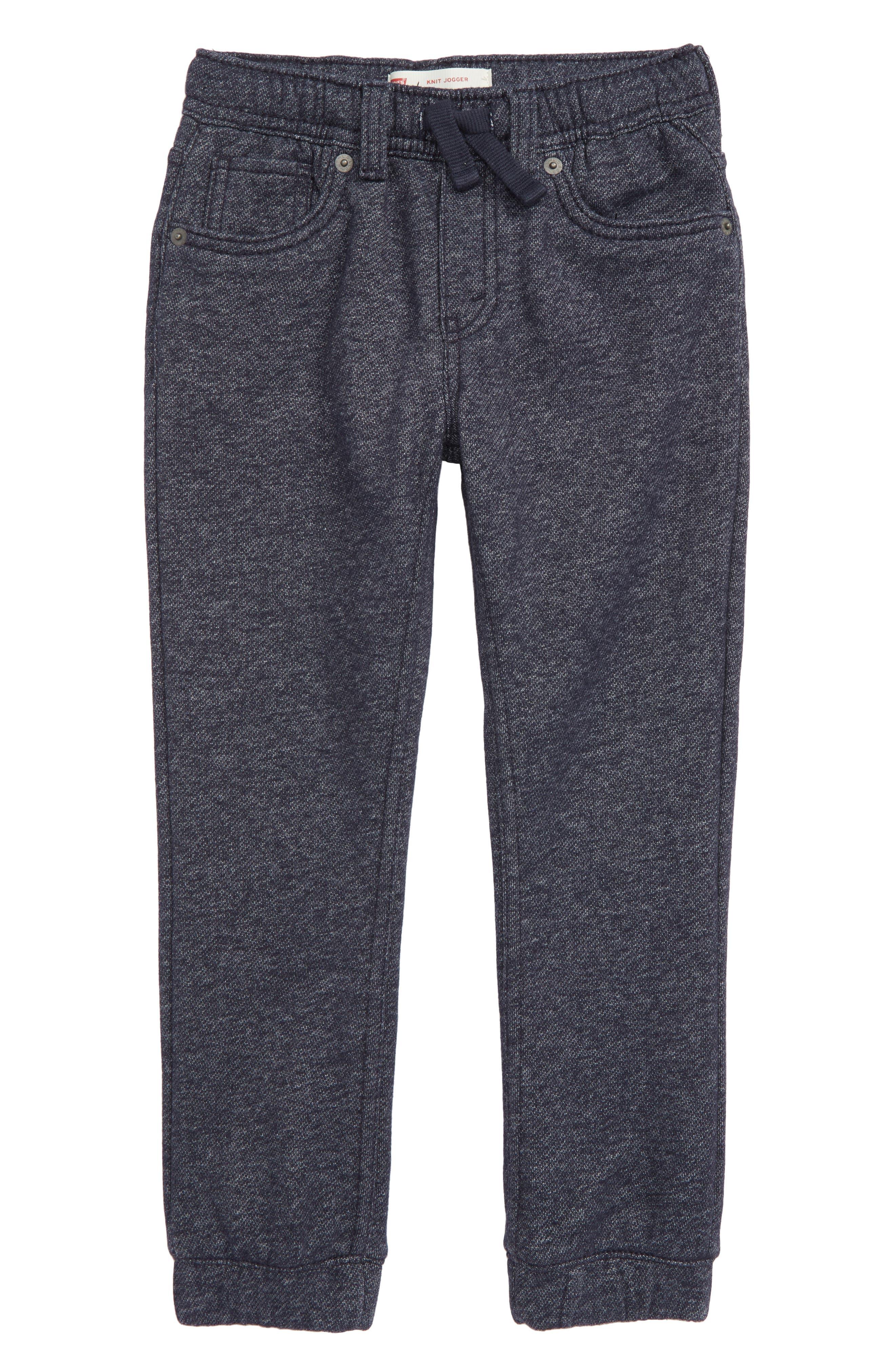 Knit Jogger Pants, Main, color, 410