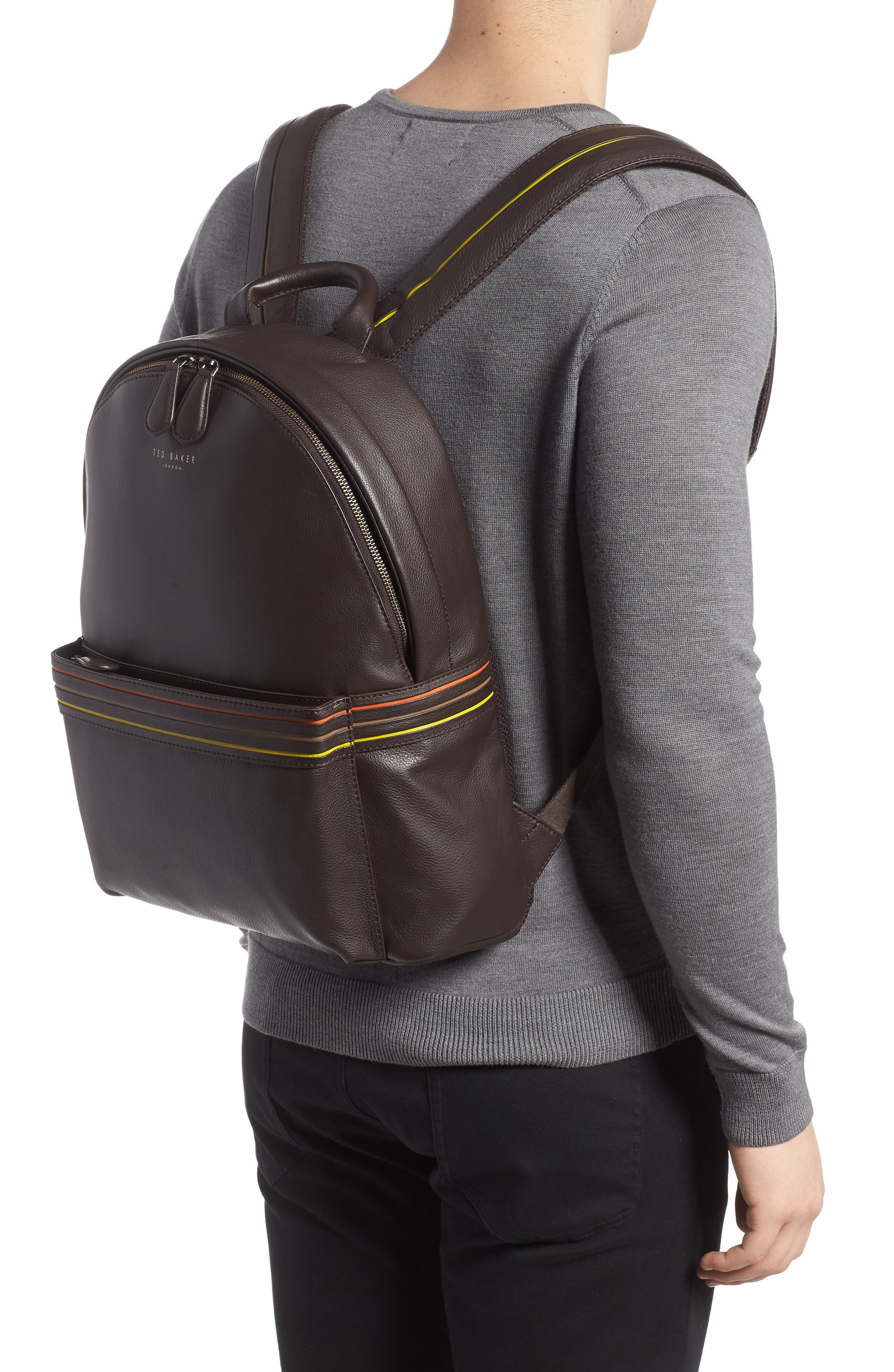 Huntman Stripe Backpack,                             Alternate thumbnail 2, color,                             CHOCOLATE
