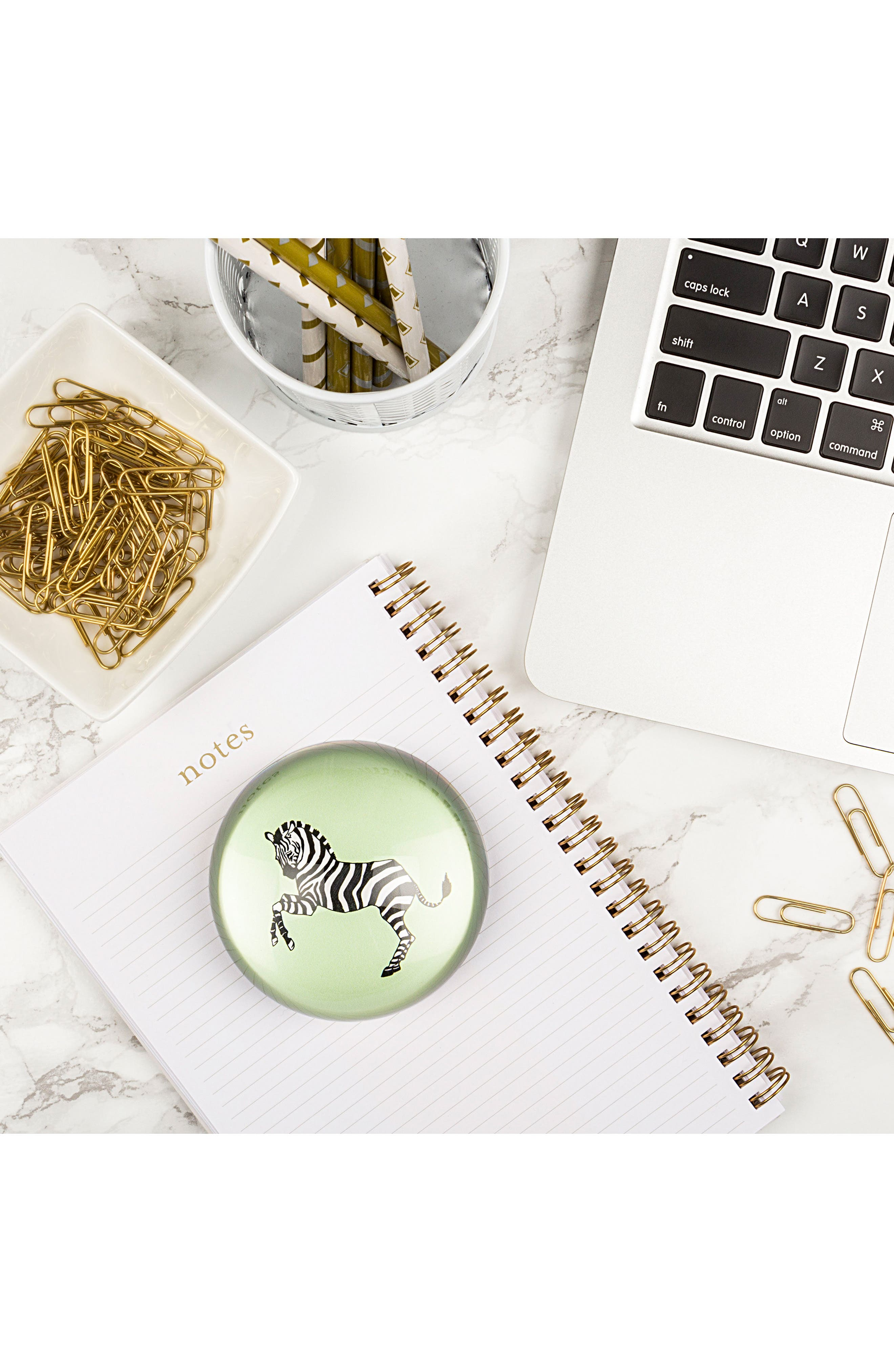 Zebra Domed Glass Paperweight,                             Alternate thumbnail 3, color,                             300
