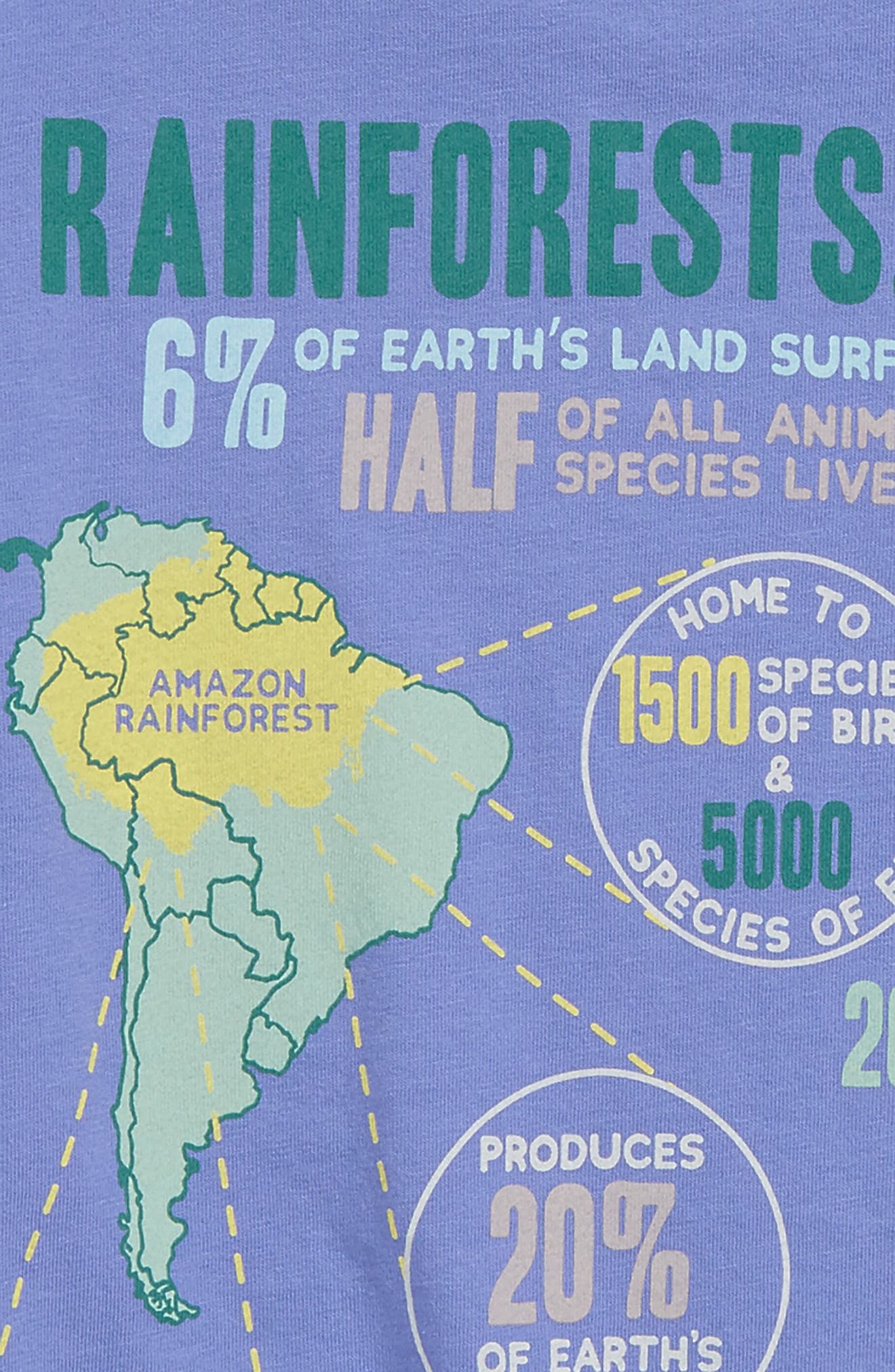 PEEK AREN'T YOU CURIOUS,                             Rain Forest T-Shirt,                             Alternate thumbnail 3, color,                             PURPLE