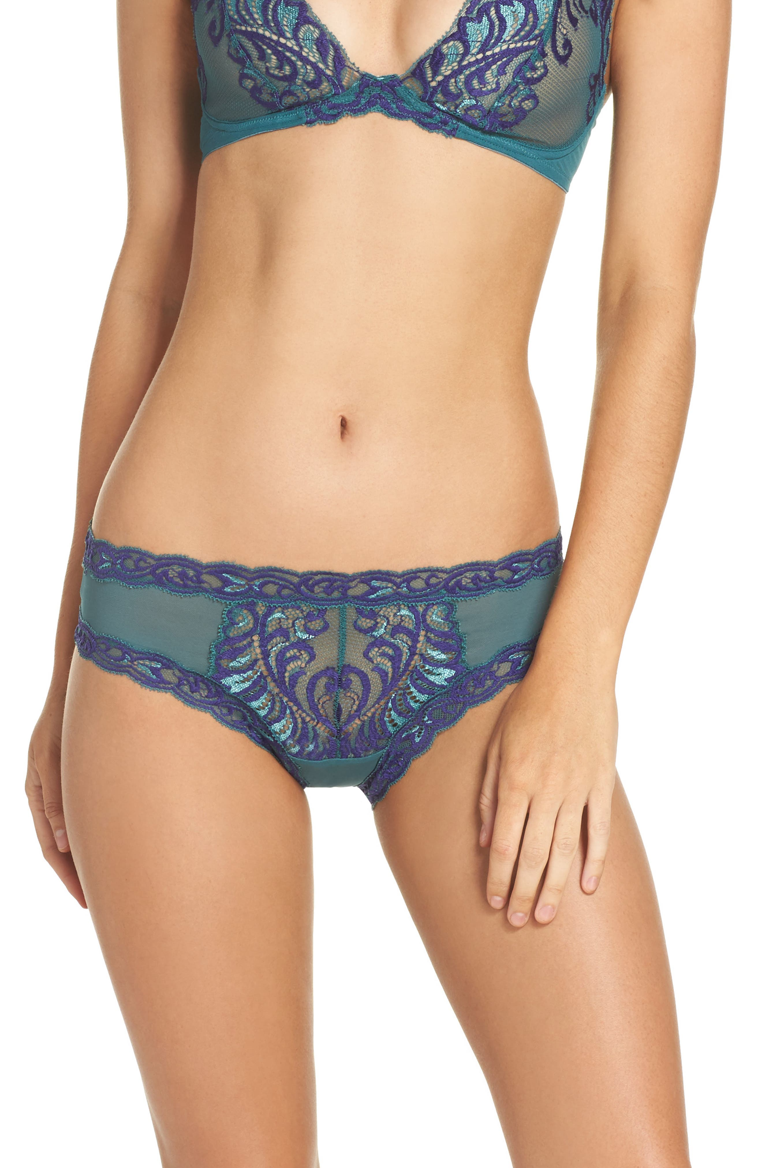 Feathers Hipster Briefs,                             Alternate thumbnail 94, color,