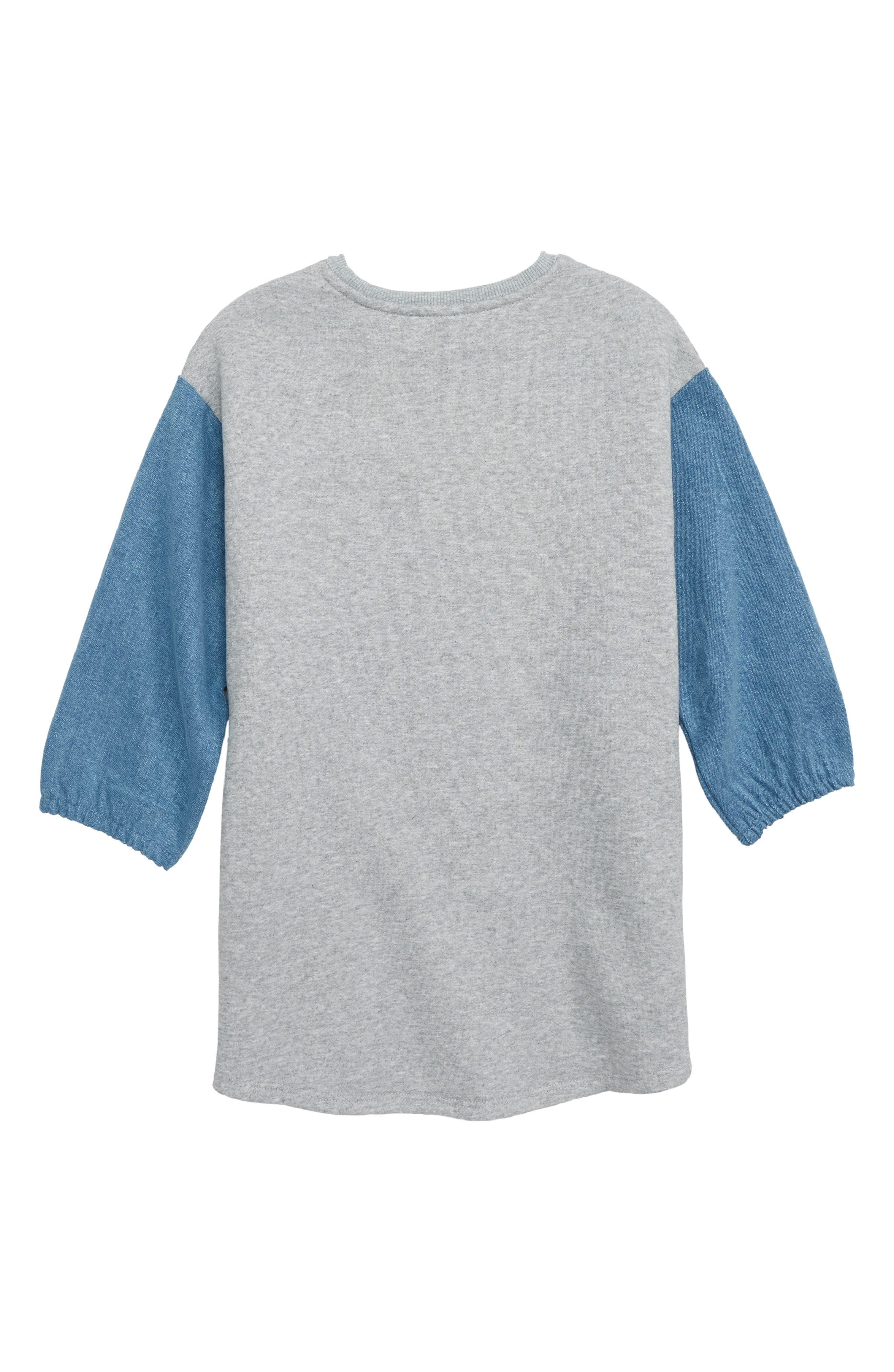 Denim Puff Sleeve Sweatshirt Dress,                             Alternate thumbnail 2, color,                             030