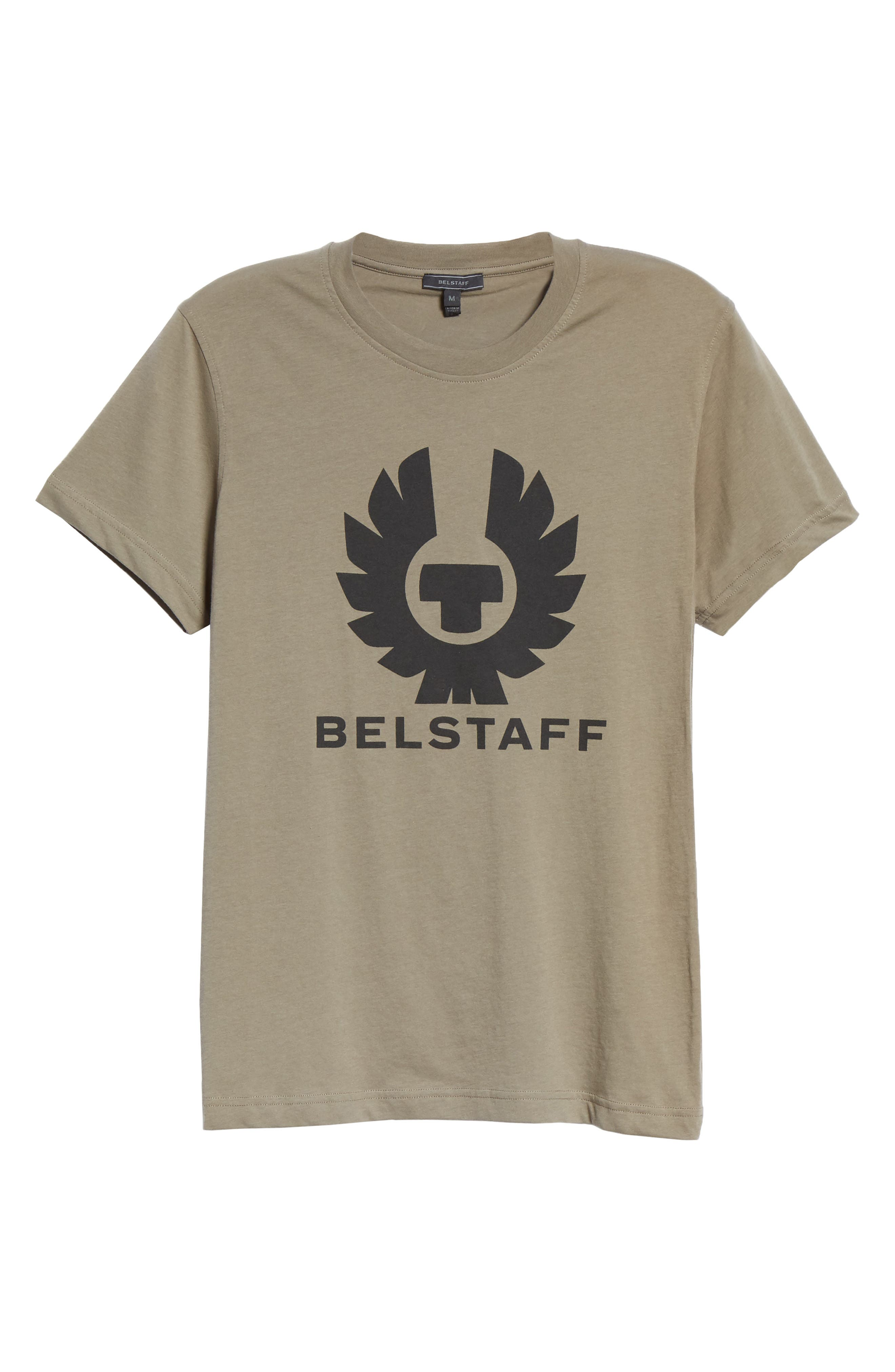 Logo Graphic Jersey T-Shirt,                             Alternate thumbnail 6, color,                             300