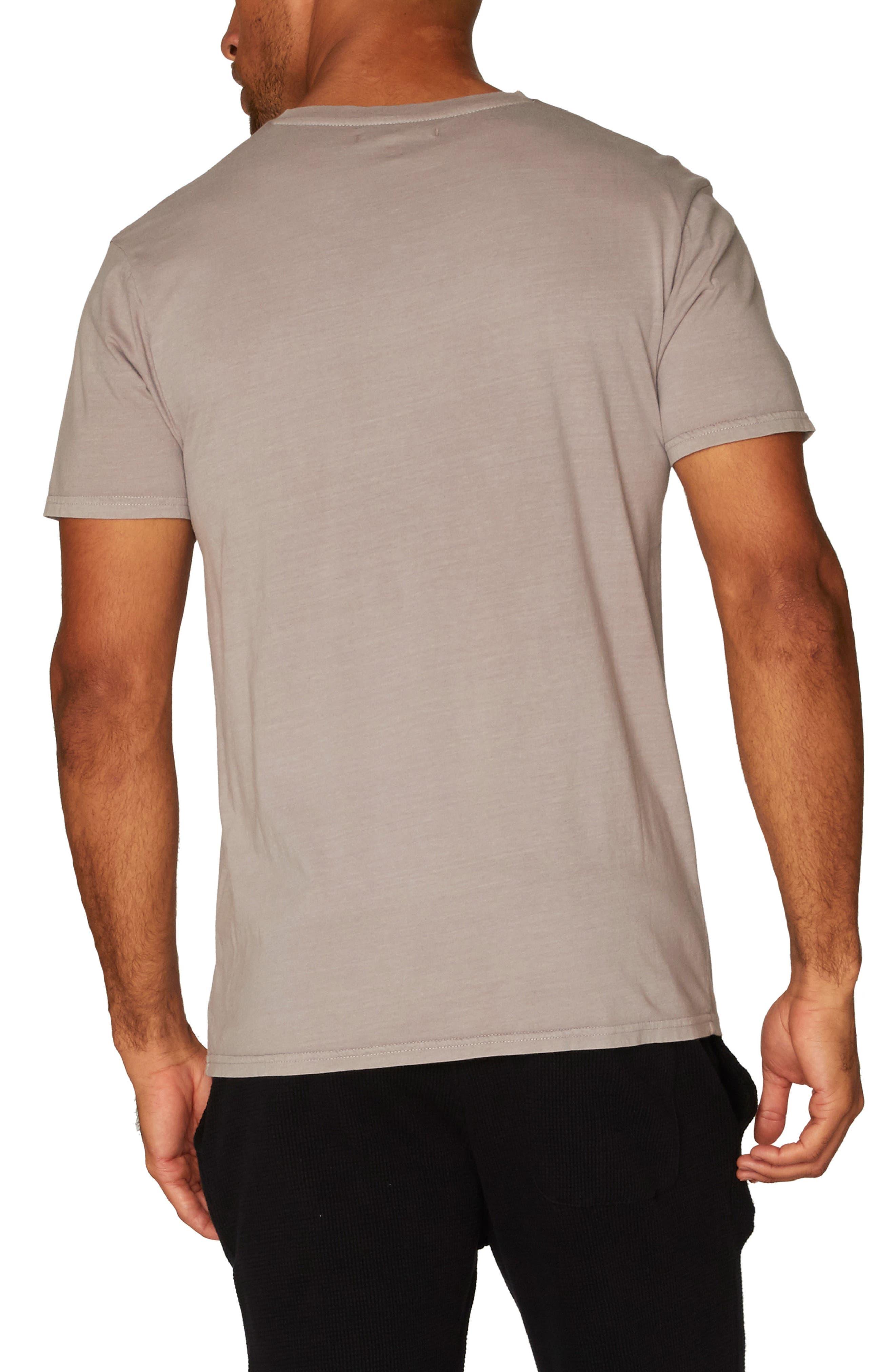 Standard V-Neck T-Shirt,                             Alternate thumbnail 8, color,