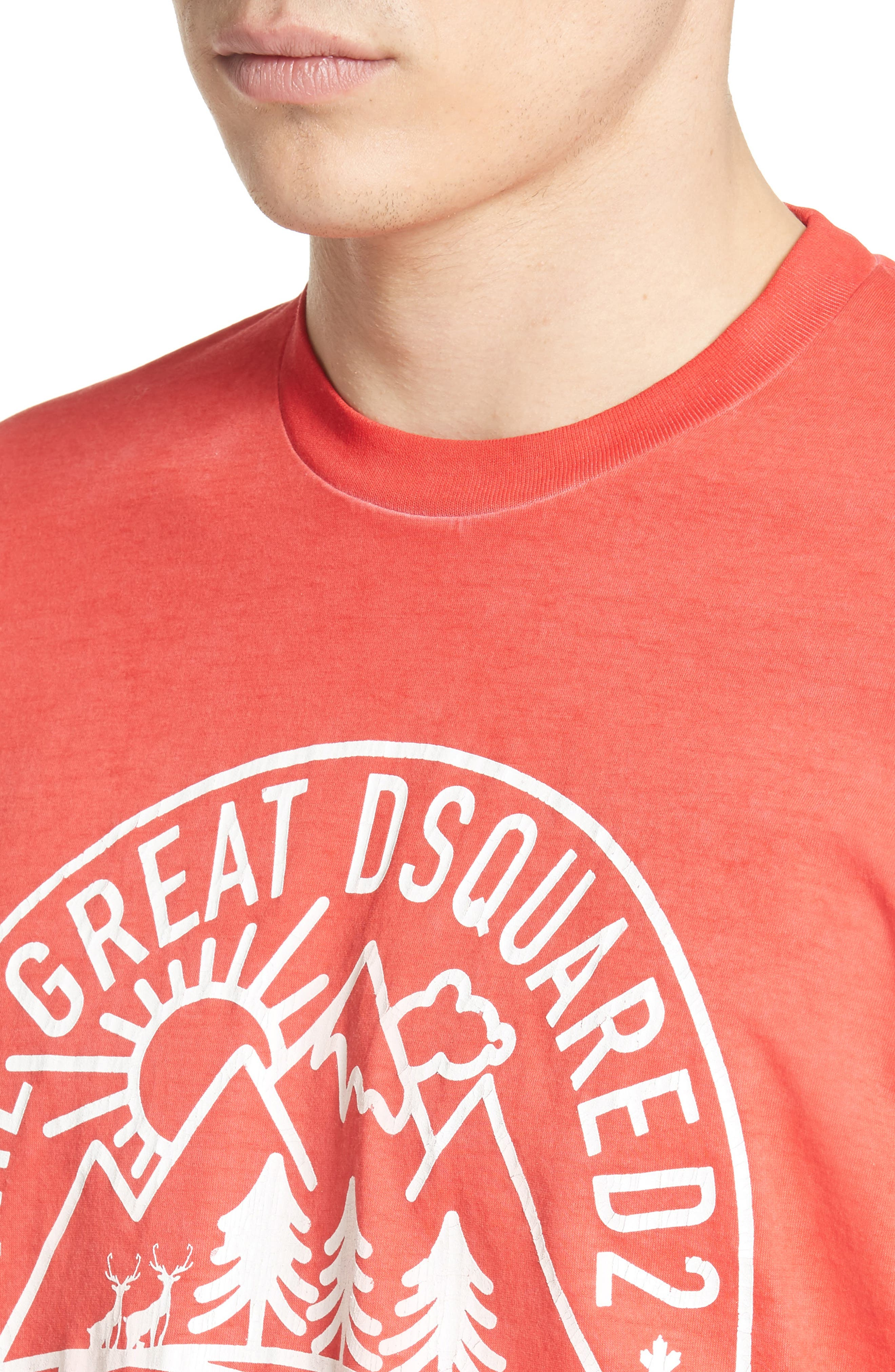 Mountain Logo Graphic T-Shirt,                             Alternate thumbnail 4, color,