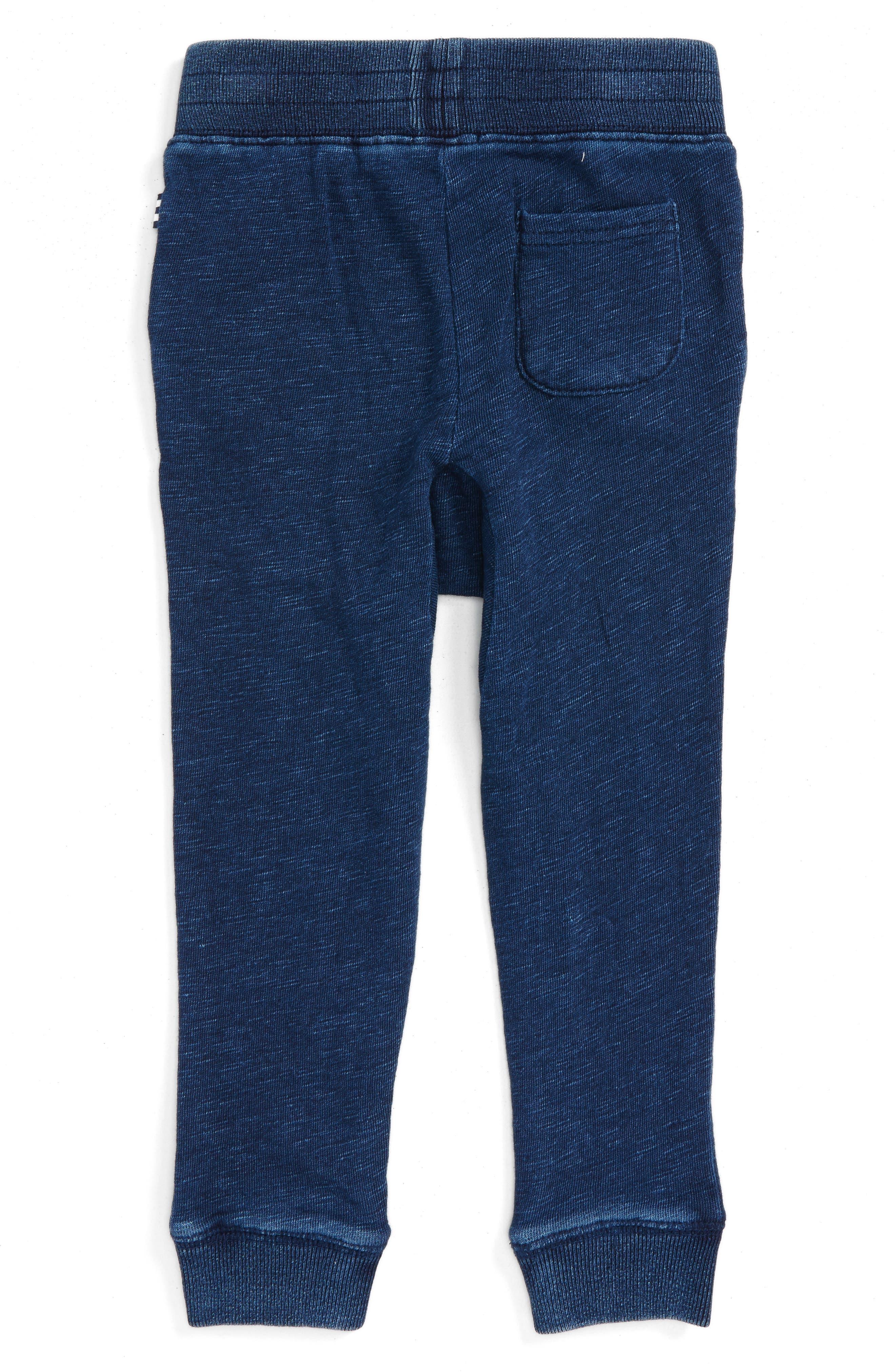 Double Knit Jogger Pants,                             Alternate thumbnail 2, color,                             400