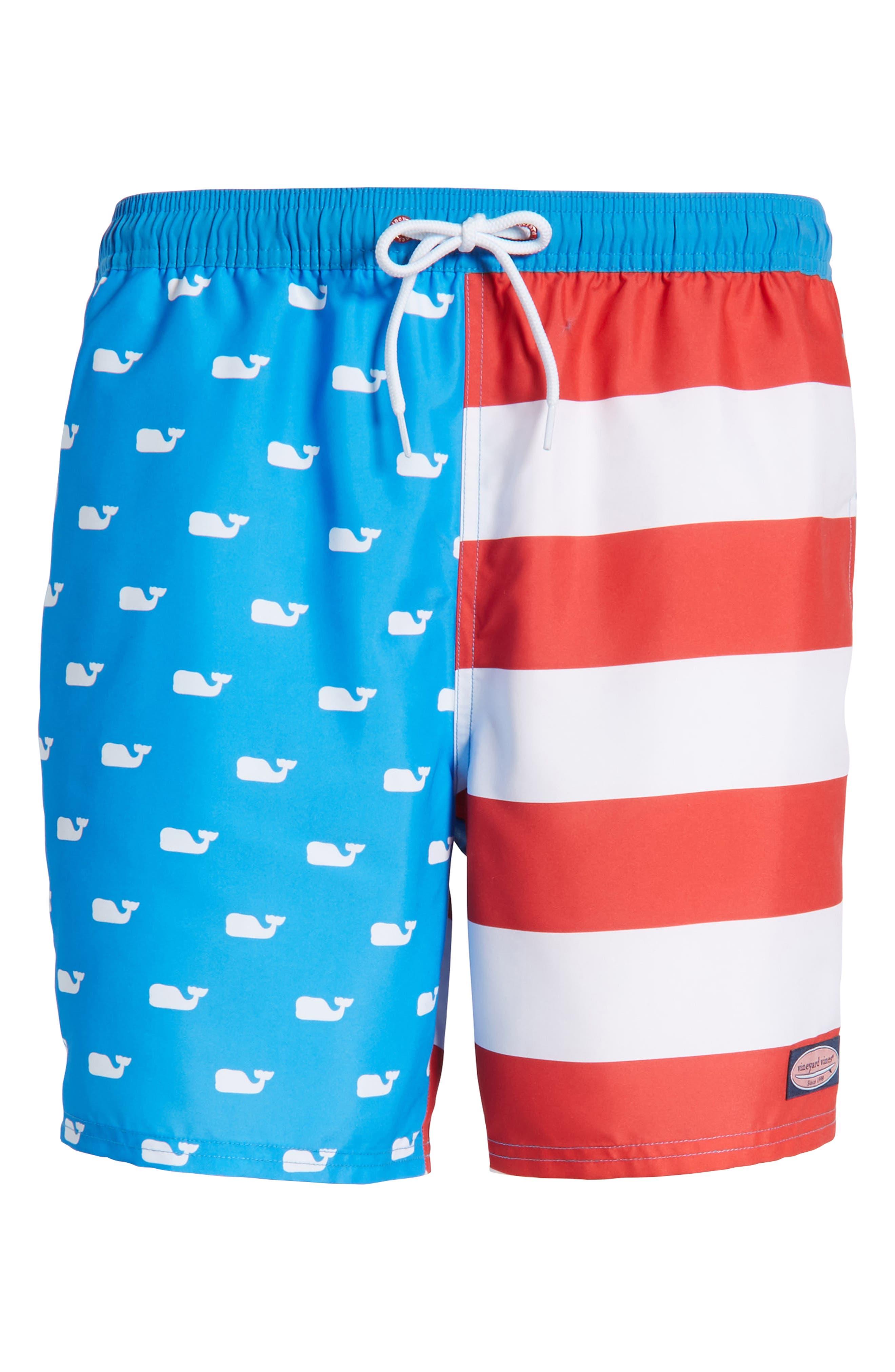 Whale Flag Chappy Swim Trunks,                             Alternate thumbnail 6, color,                             494