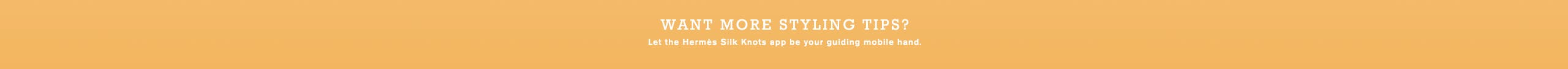 Want more styling tips? Look for the Hermès Silk Knots app on iOS and Android.