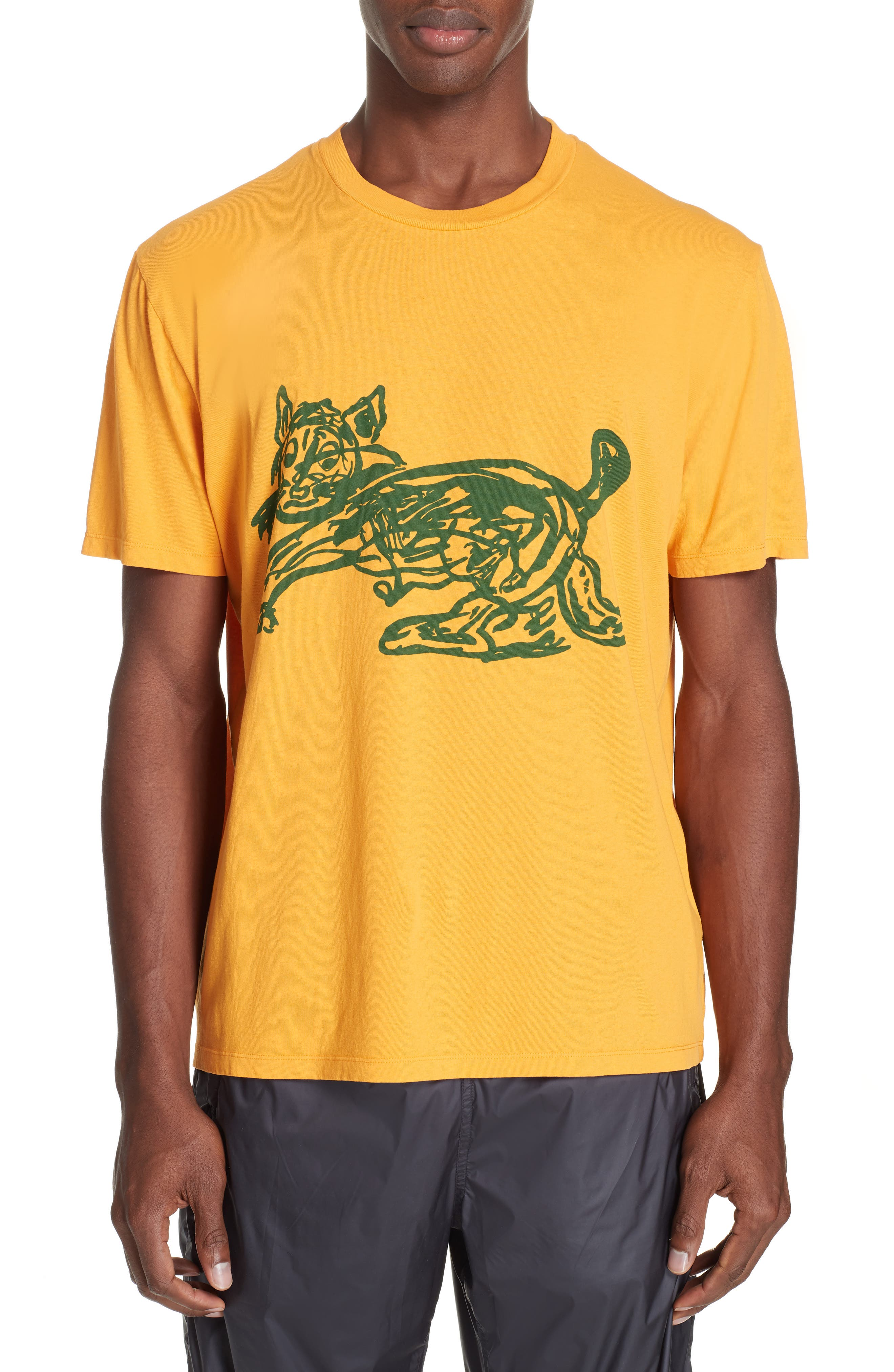 Cat Graphic Box T-shirt,                         Main,                         color, CAT PRINT