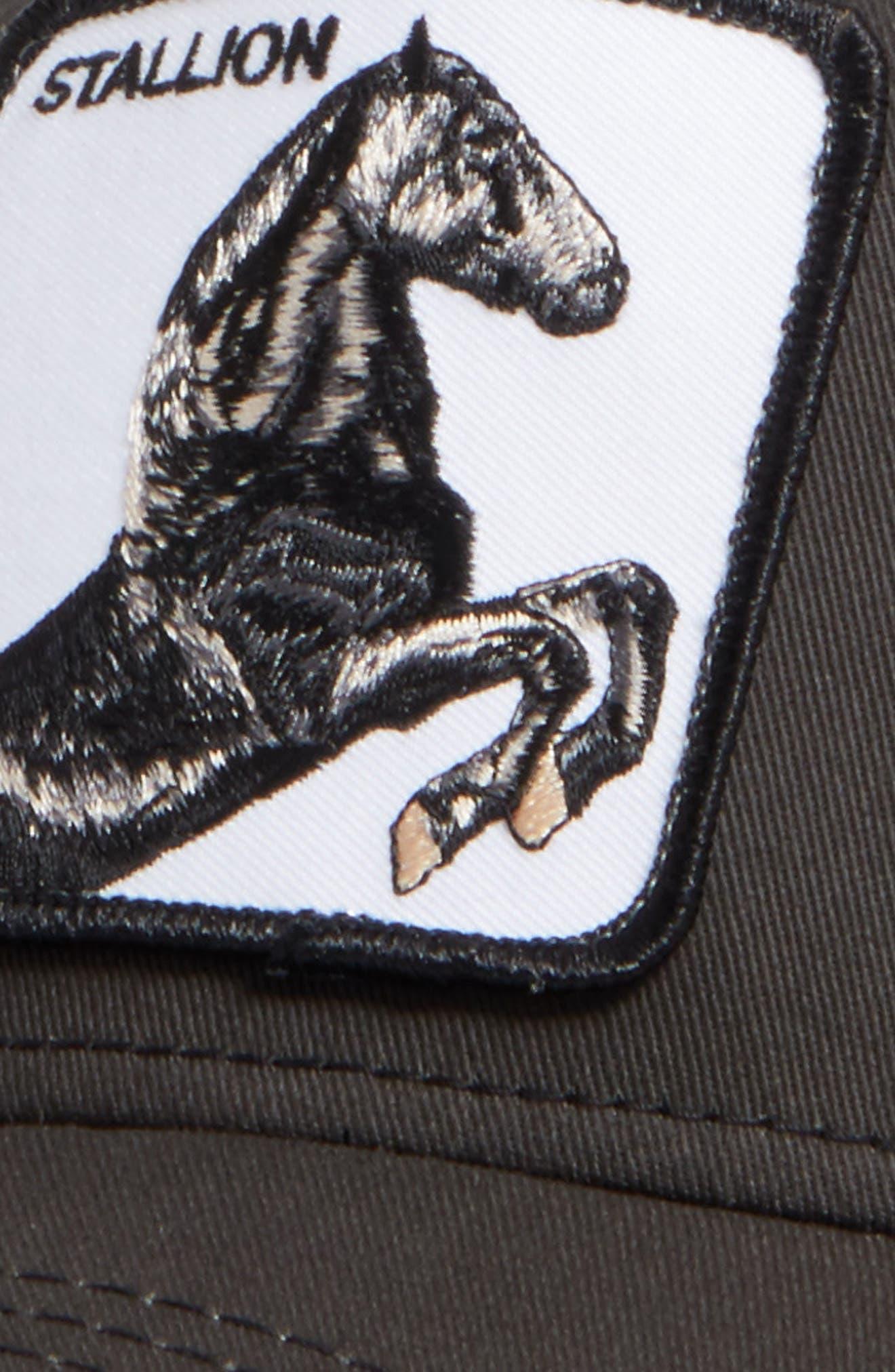 'Stallion' Trucker Hat,                             Alternate thumbnail 4, color,                             BLACK