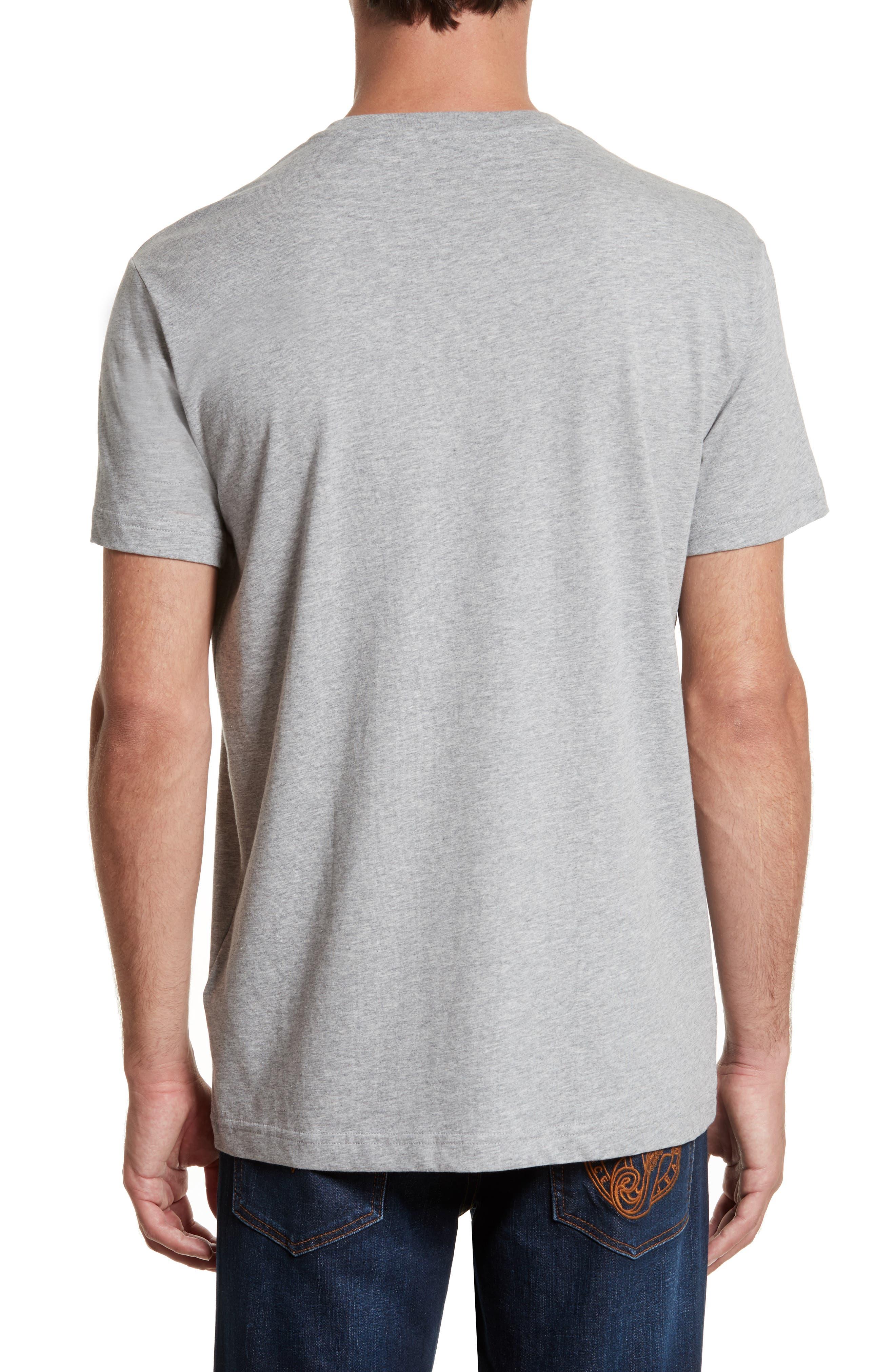 Graphic V-Neck T-Shirt,                             Alternate thumbnail 2, color,                             020