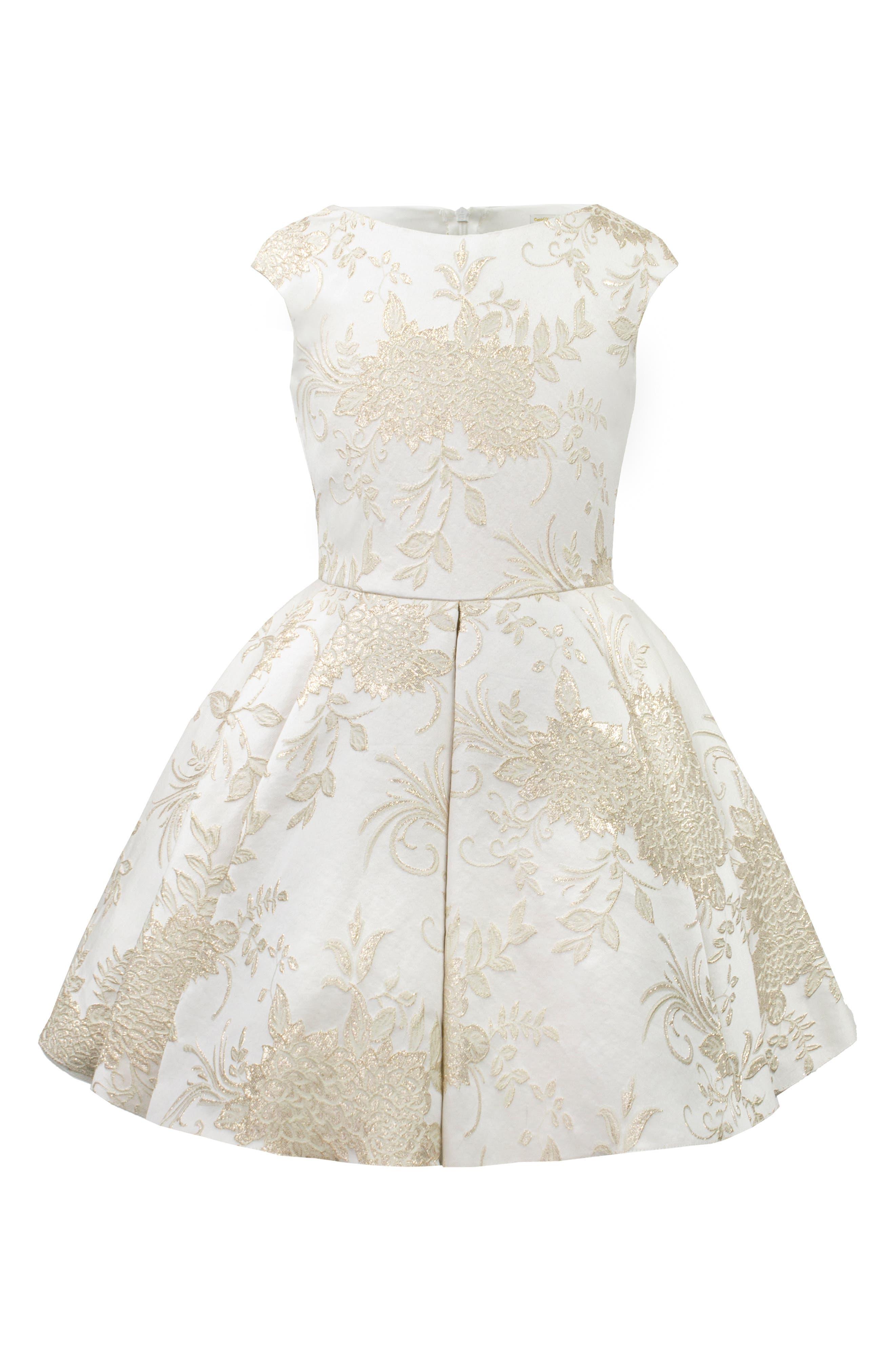 Brocade Dress,                             Main thumbnail 1, color,                             101