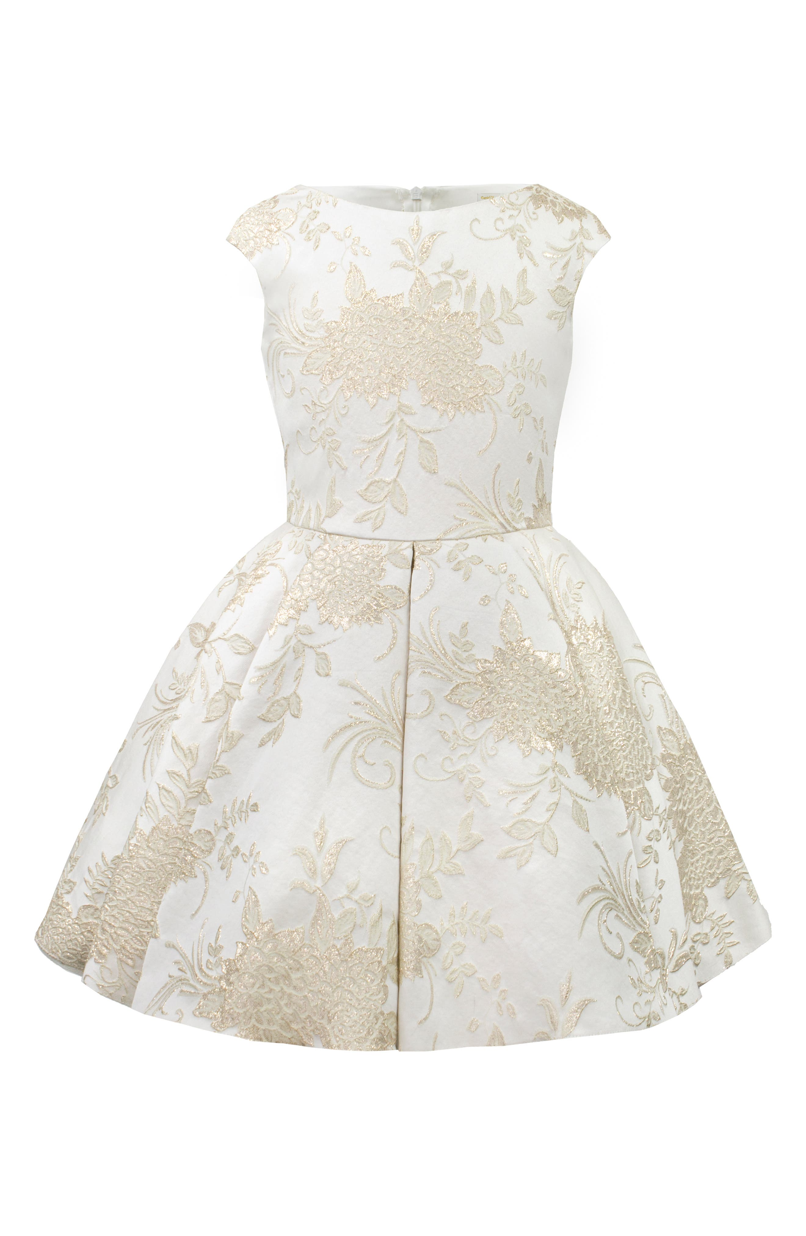 Brocade Dress,                         Main,                         color, 101