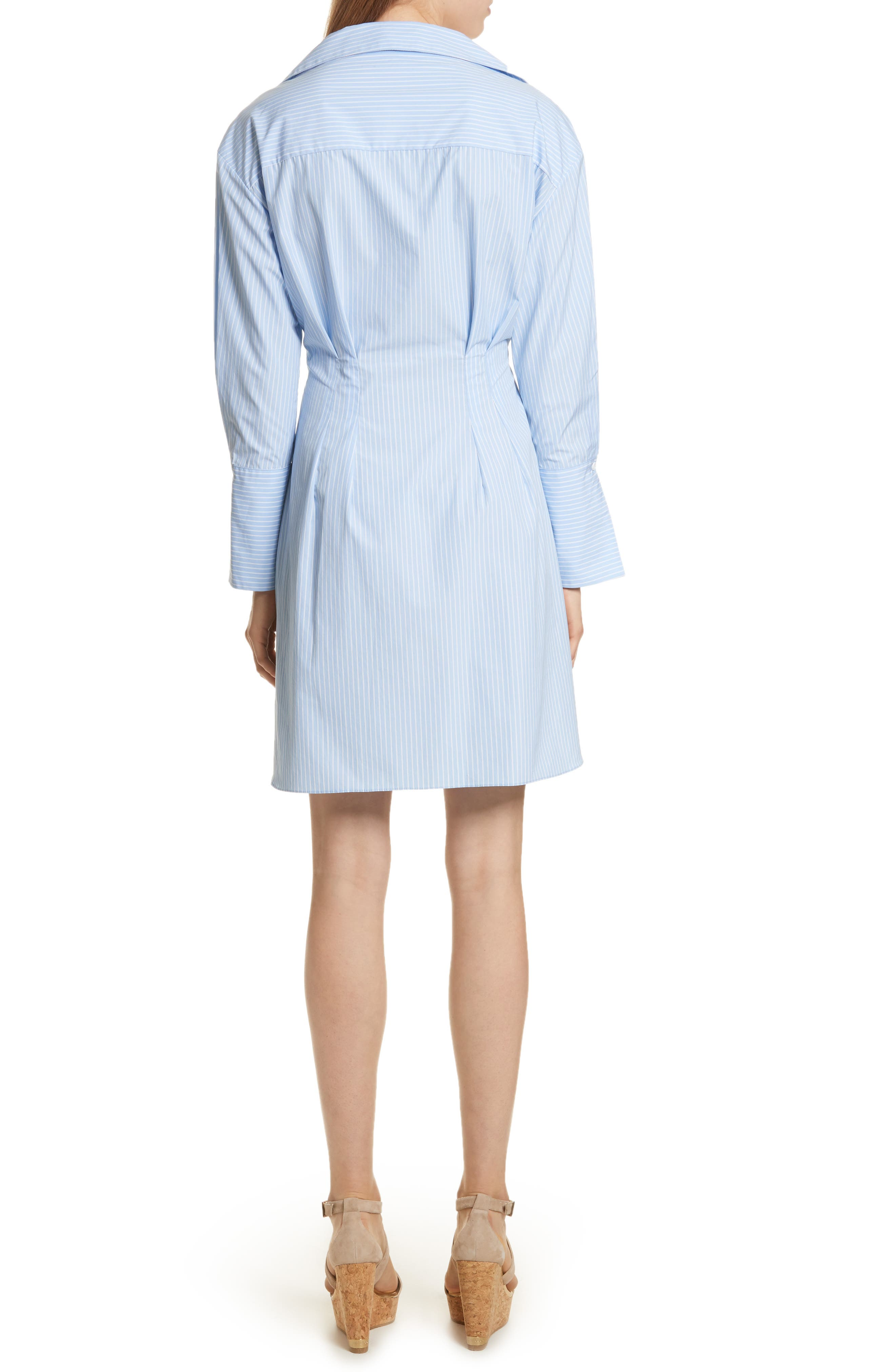Vergie Seamed Shirtdress,                             Alternate thumbnail 2, color,                             490