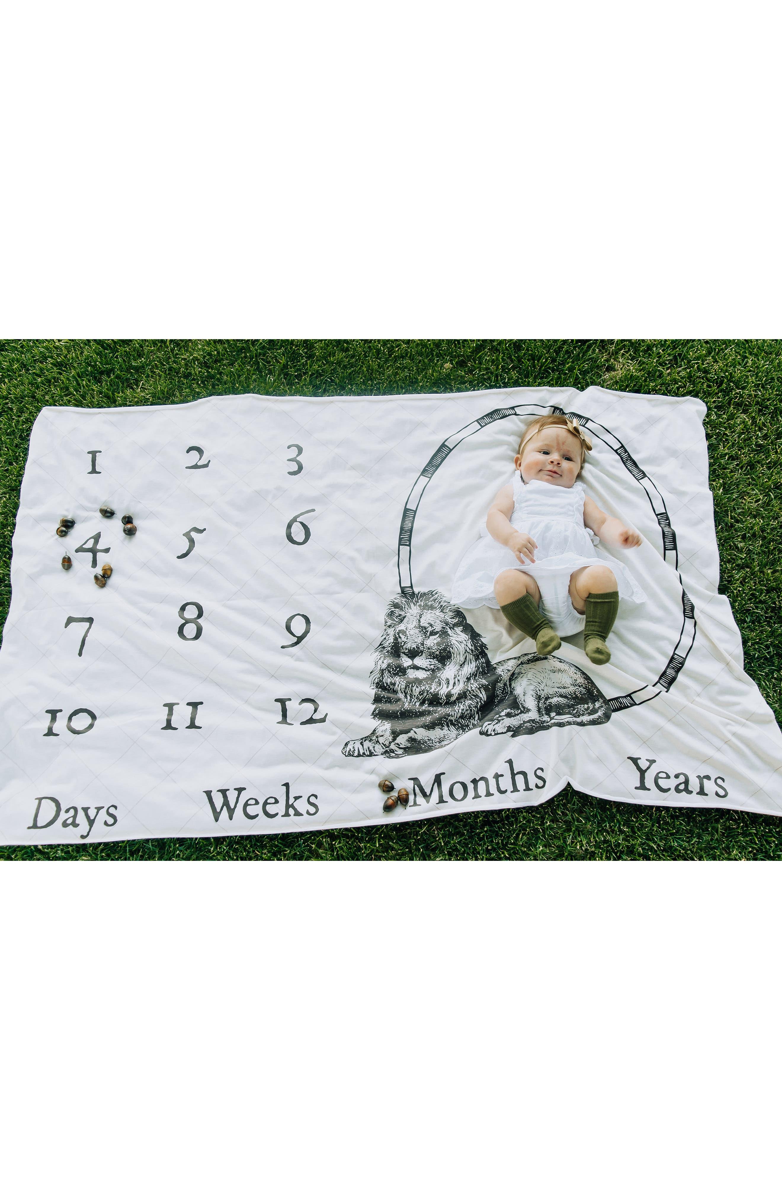 Safari Monthly Memory Blanket & Swaddle Set,                             Alternate thumbnail 4, color,                             SAFARI MEMORY
