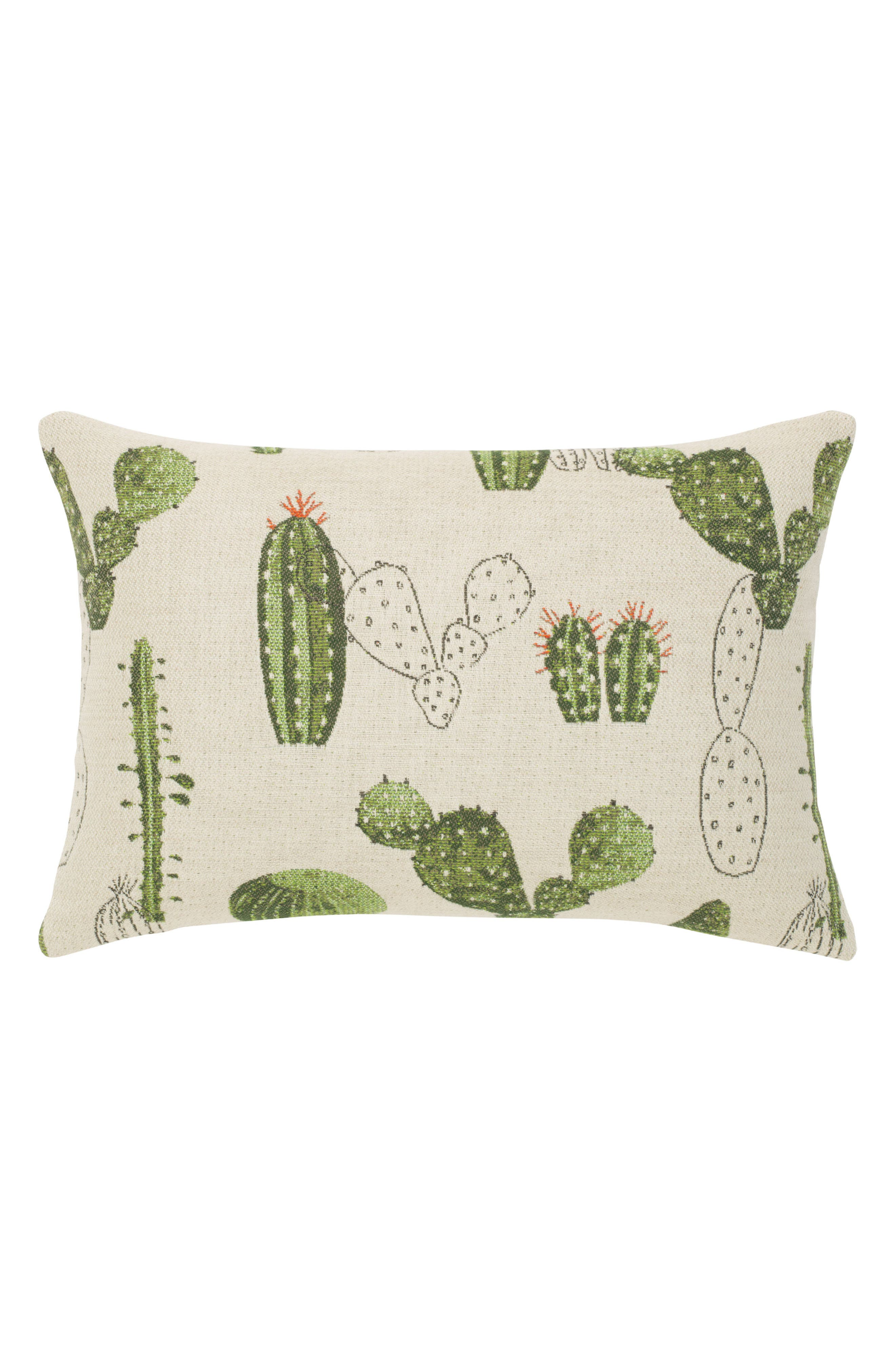 Cacti Indoor/Outdoor Accent Pillow,                         Main,                         color, 300